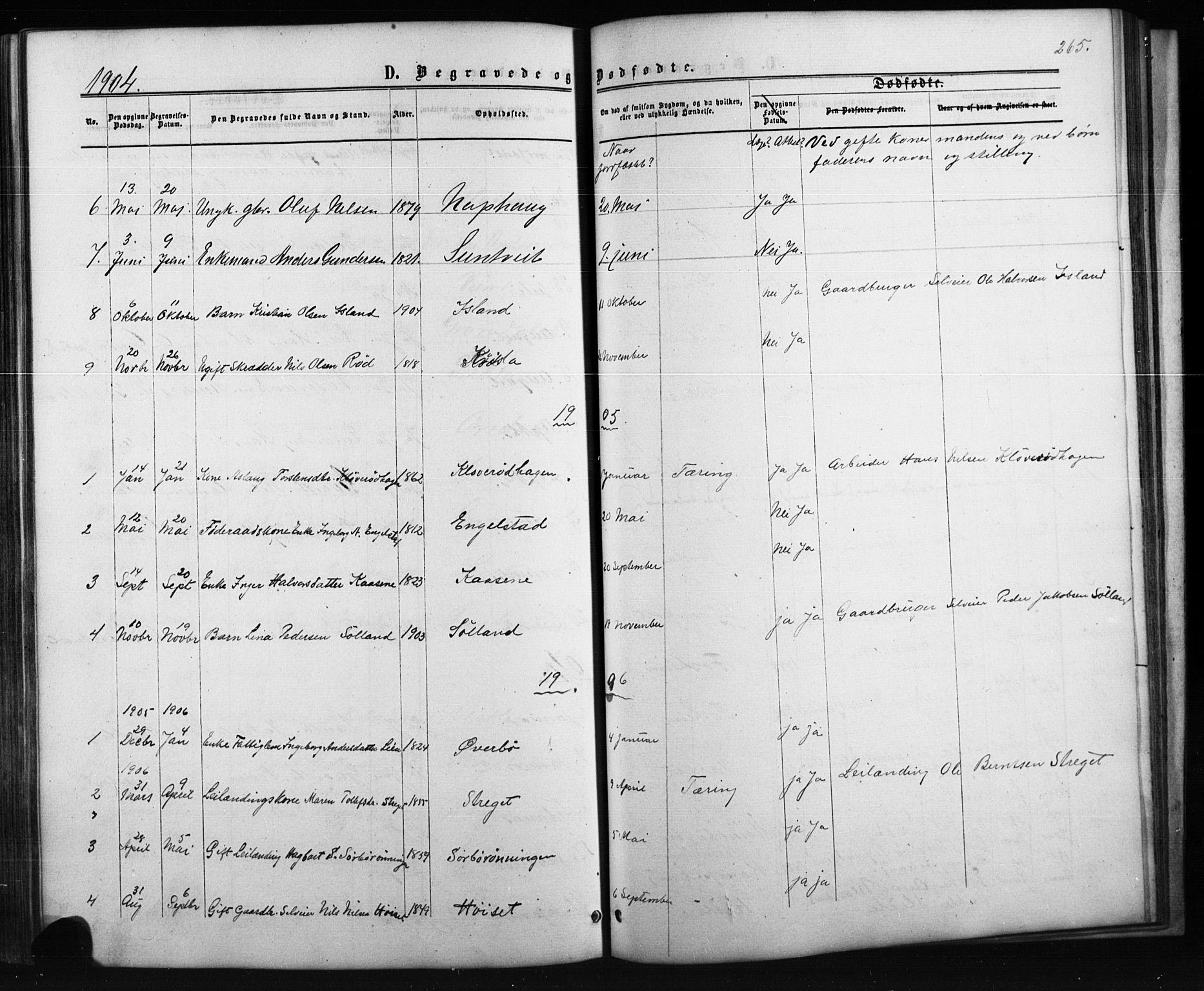 SAKO, Siljan kirkebøker, G/Ga/L0002: Klokkerbok nr. 2, 1864-1908, s. 265
