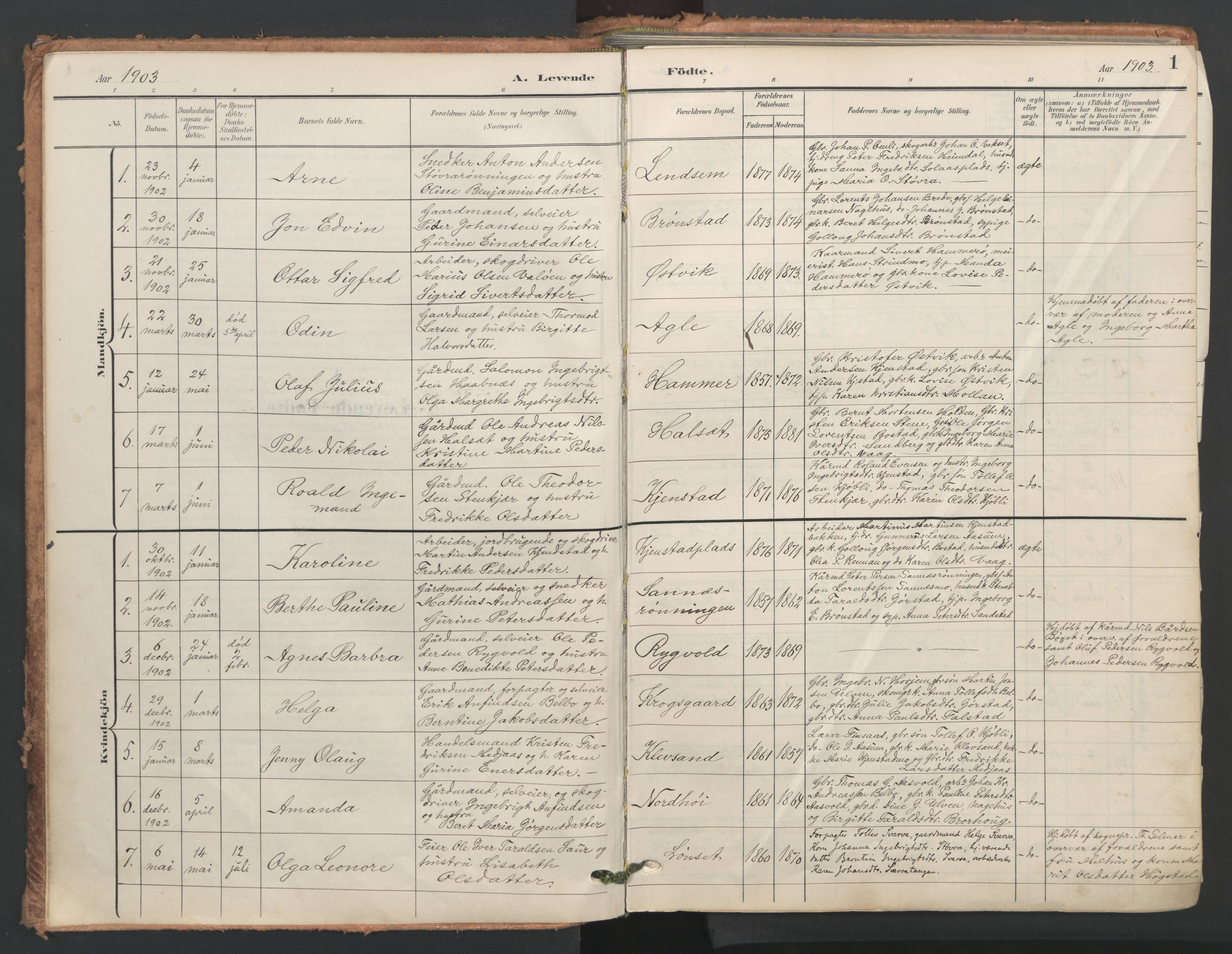 SAT, Ministerialprotokoller, klokkerbøker og fødselsregistre - Nord-Trøndelag, 749/L0477: Ministerialbok nr. 749A11, 1902-1927, s. 1