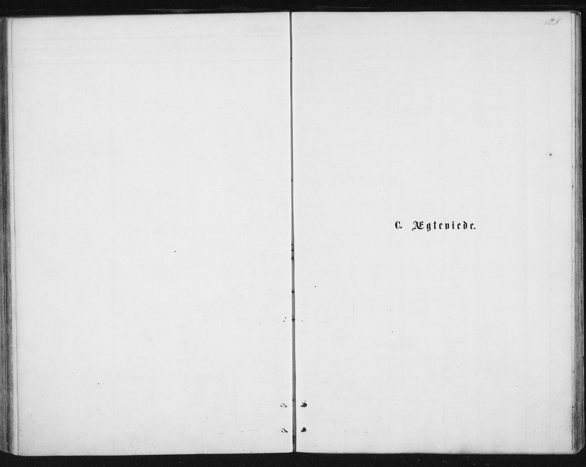 SAT, Ministerialprotokoller, klokkerbøker og fødselsregistre - Nordland, 888/L1243: Ministerialbok nr. 888A09, 1876-1879, s. 128