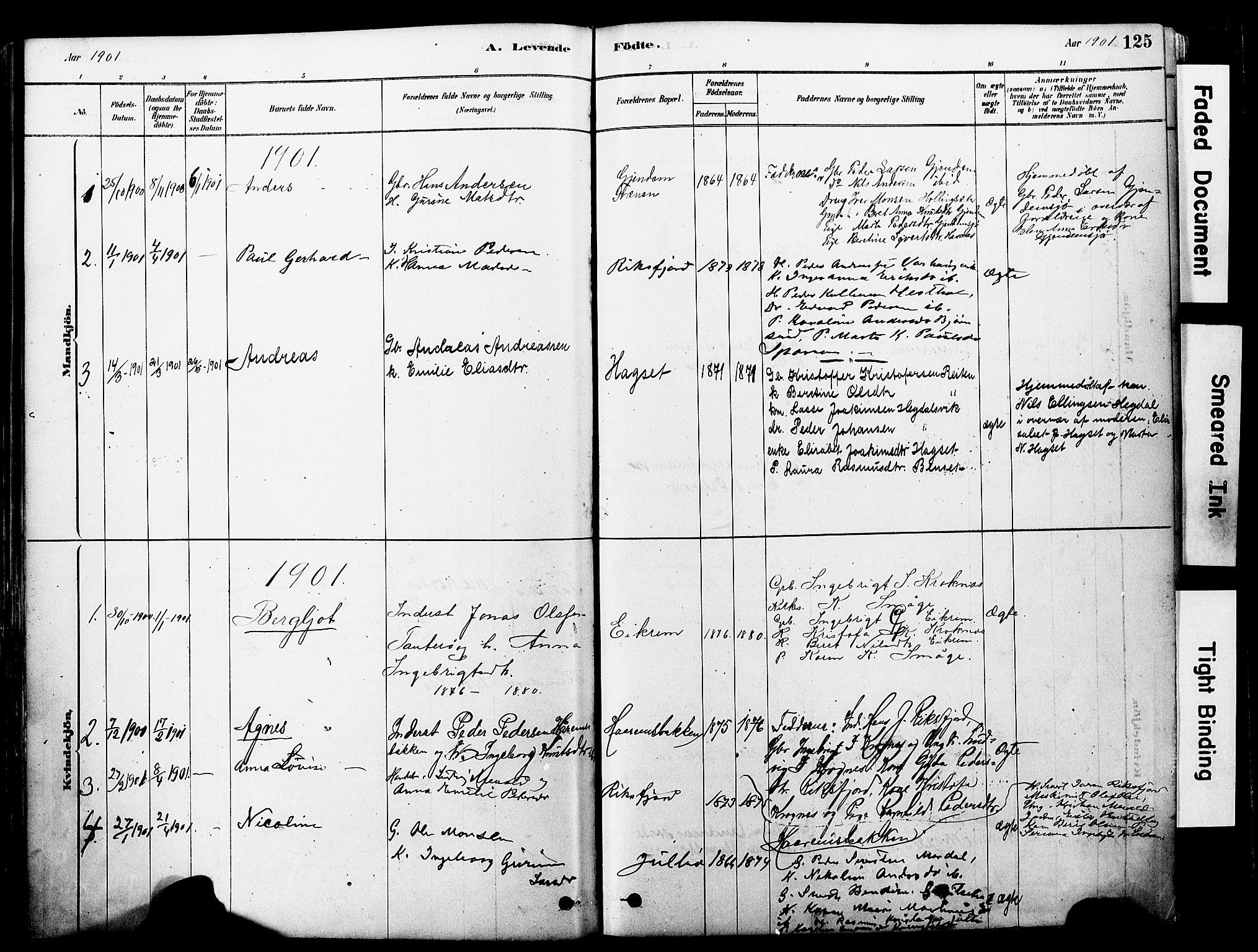 SAT, Ministerialprotokoller, klokkerbøker og fødselsregistre - Møre og Romsdal, 560/L0721: Ministerialbok nr. 560A05, 1878-1917, s. 125