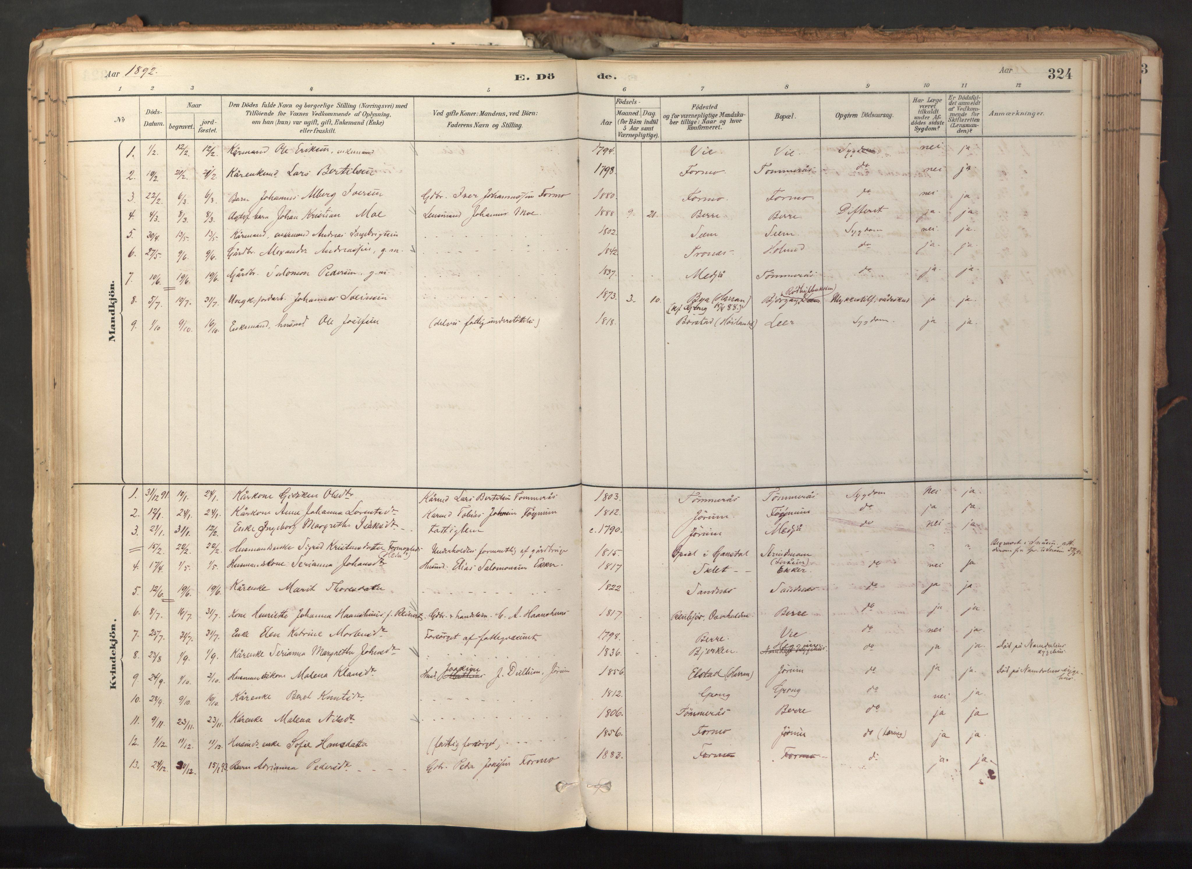 SAT, Ministerialprotokoller, klokkerbøker og fødselsregistre - Nord-Trøndelag, 758/L0519: Ministerialbok nr. 758A04, 1880-1926, s. 324