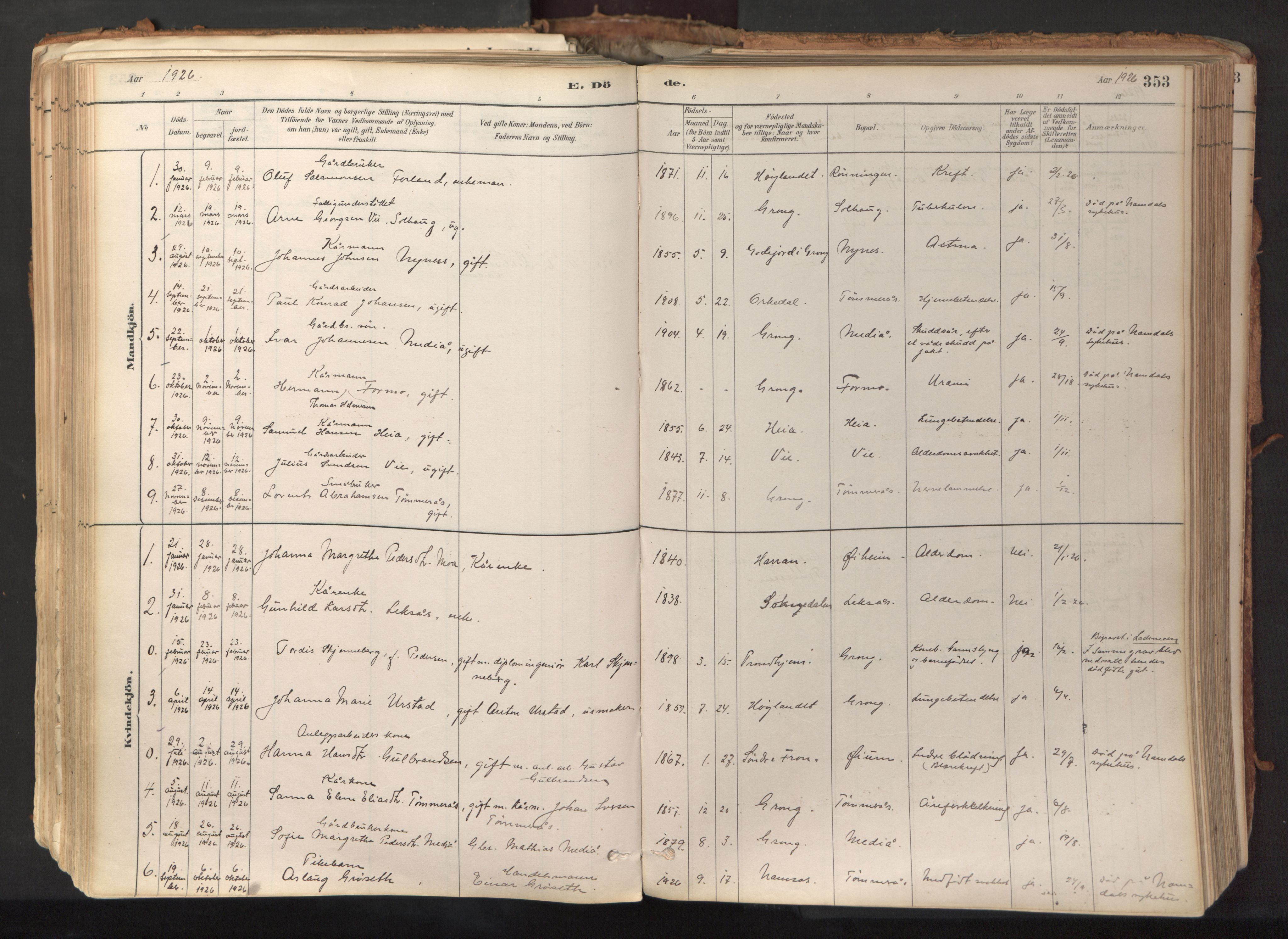 SAT, Ministerialprotokoller, klokkerbøker og fødselsregistre - Nord-Trøndelag, 758/L0519: Ministerialbok nr. 758A04, 1880-1926, s. 353