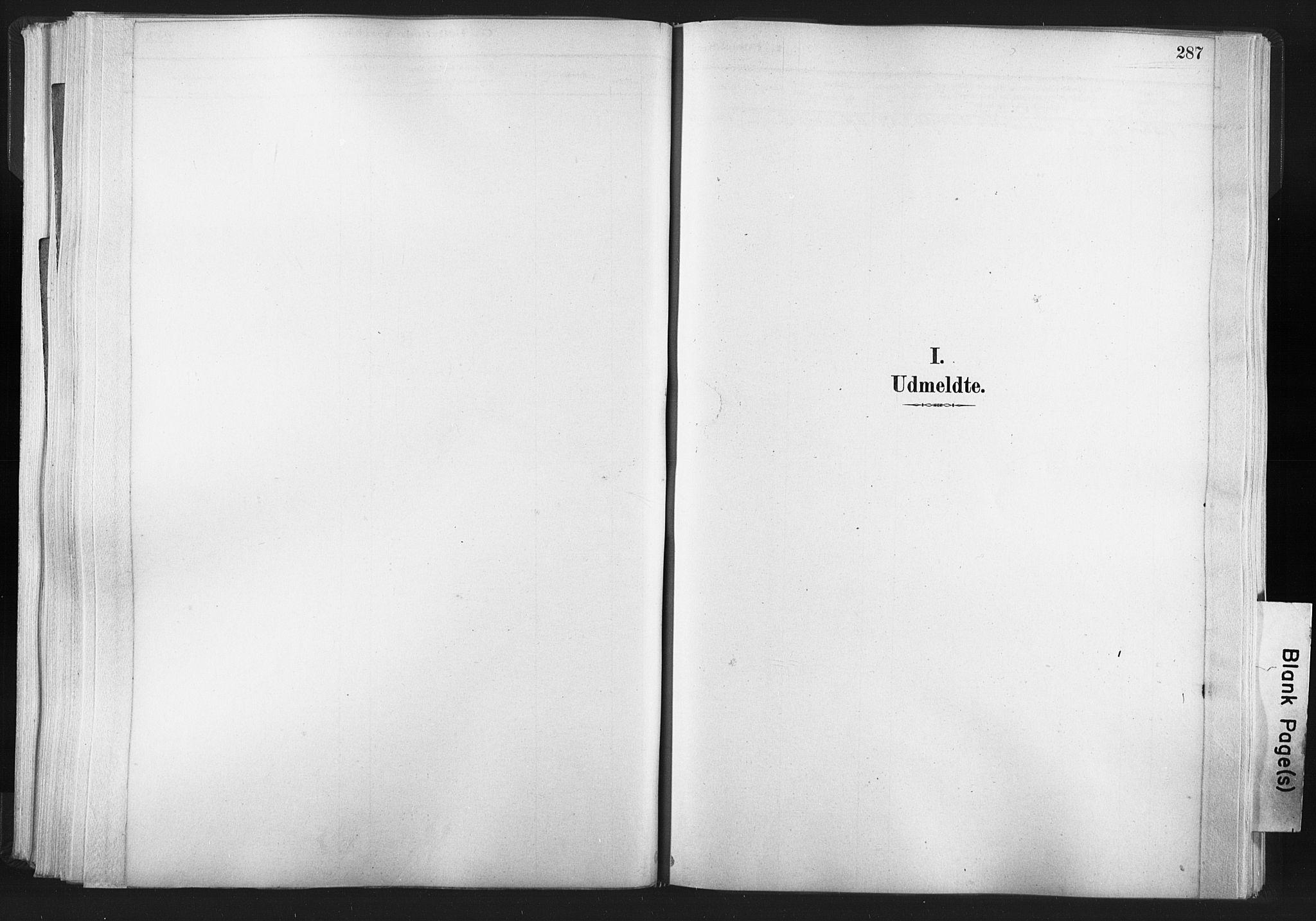 SAT, Ministerialprotokoller, klokkerbøker og fødselsregistre - Nord-Trøndelag, 749/L0474: Ministerialbok nr. 749A08, 1887-1903, s. 287