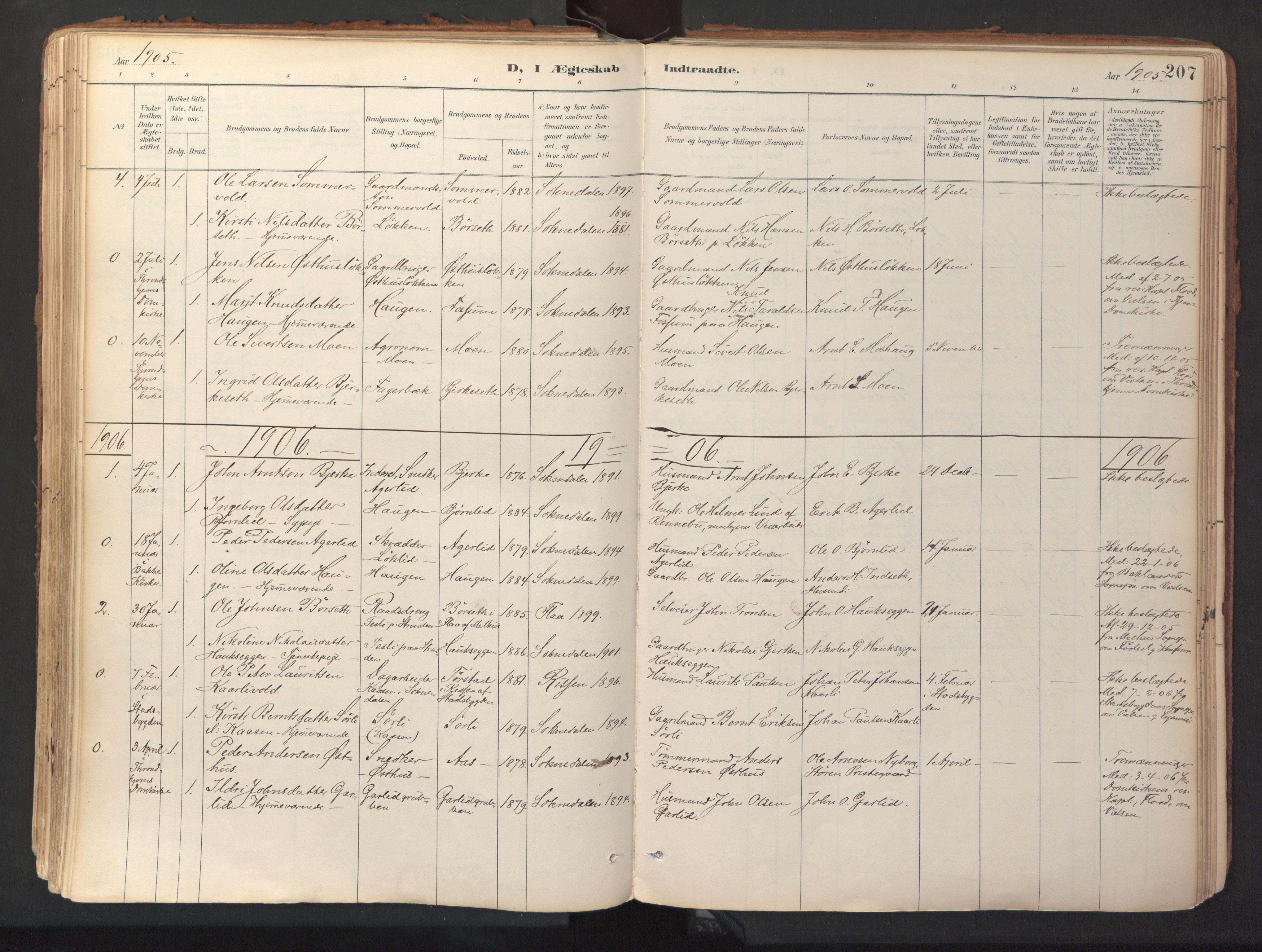 SAT, Ministerialprotokoller, klokkerbøker og fødselsregistre - Sør-Trøndelag, 689/L1041: Ministerialbok nr. 689A06, 1891-1923, s. 207