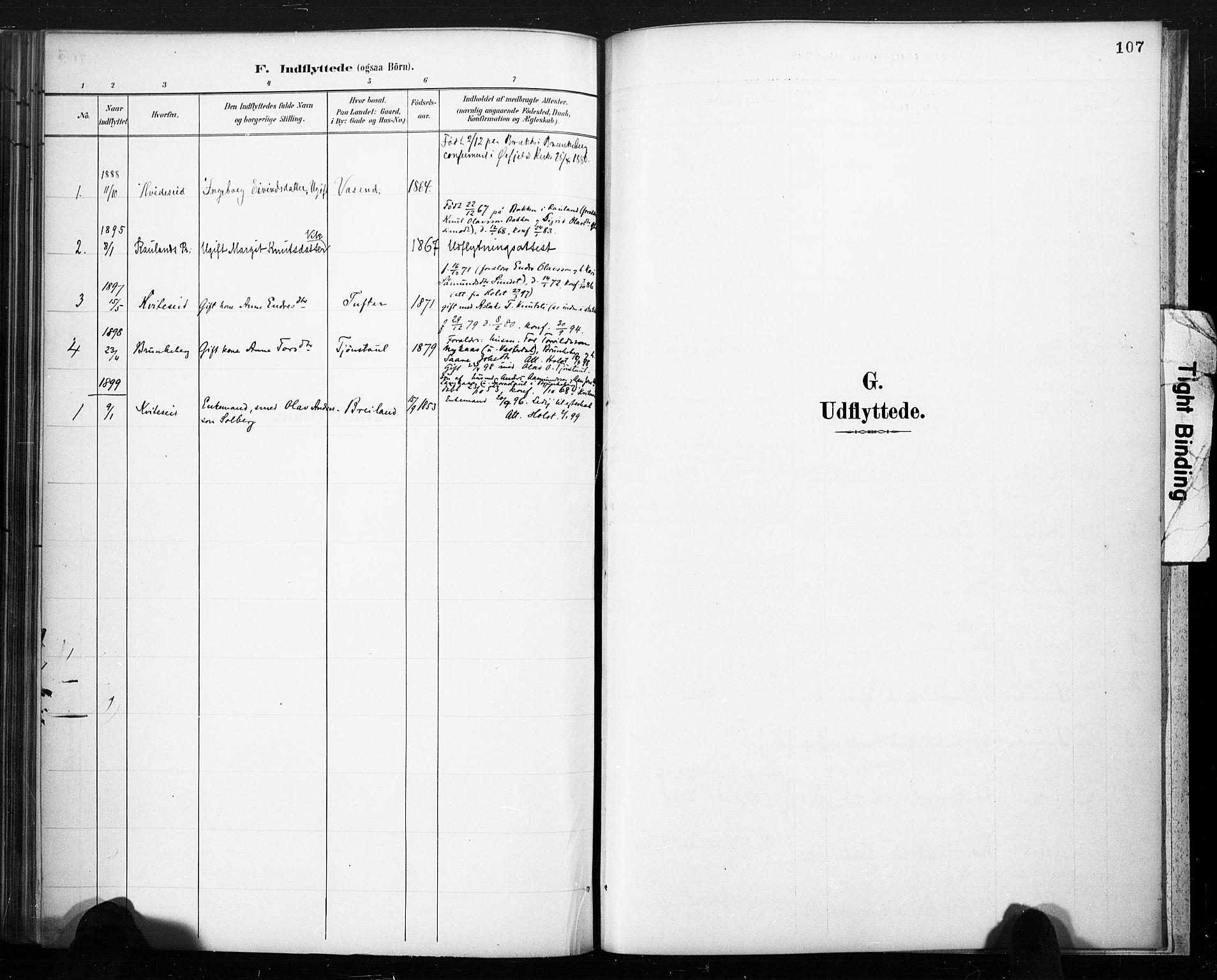 SAKO, Lårdal kirkebøker, F/Fc/L0002: Ministerialbok nr. III 2, 1887-1906, s. 107