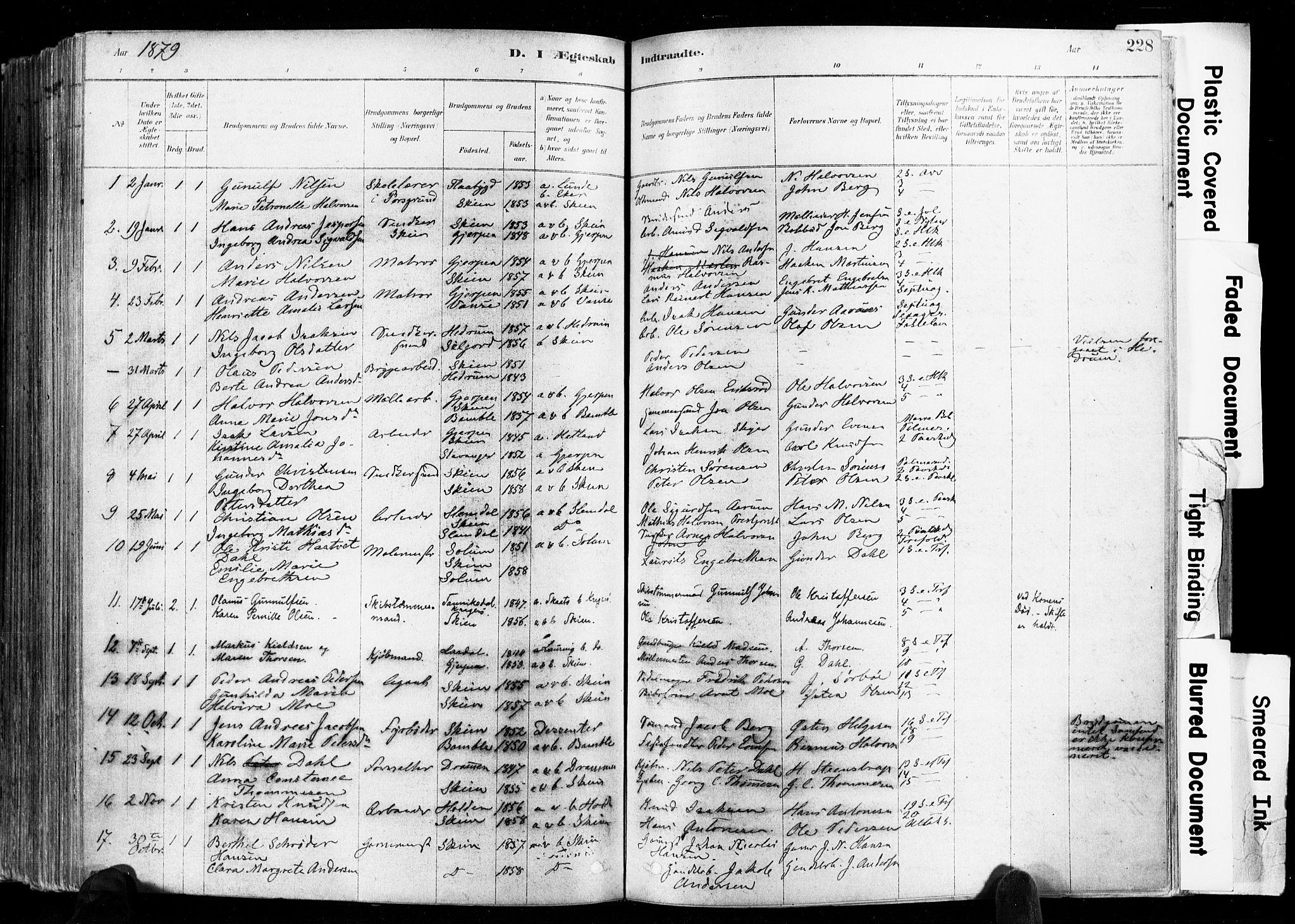 SAKO, Skien kirkebøker, F/Fa/L0009: Ministerialbok nr. 9, 1878-1890, s. 228