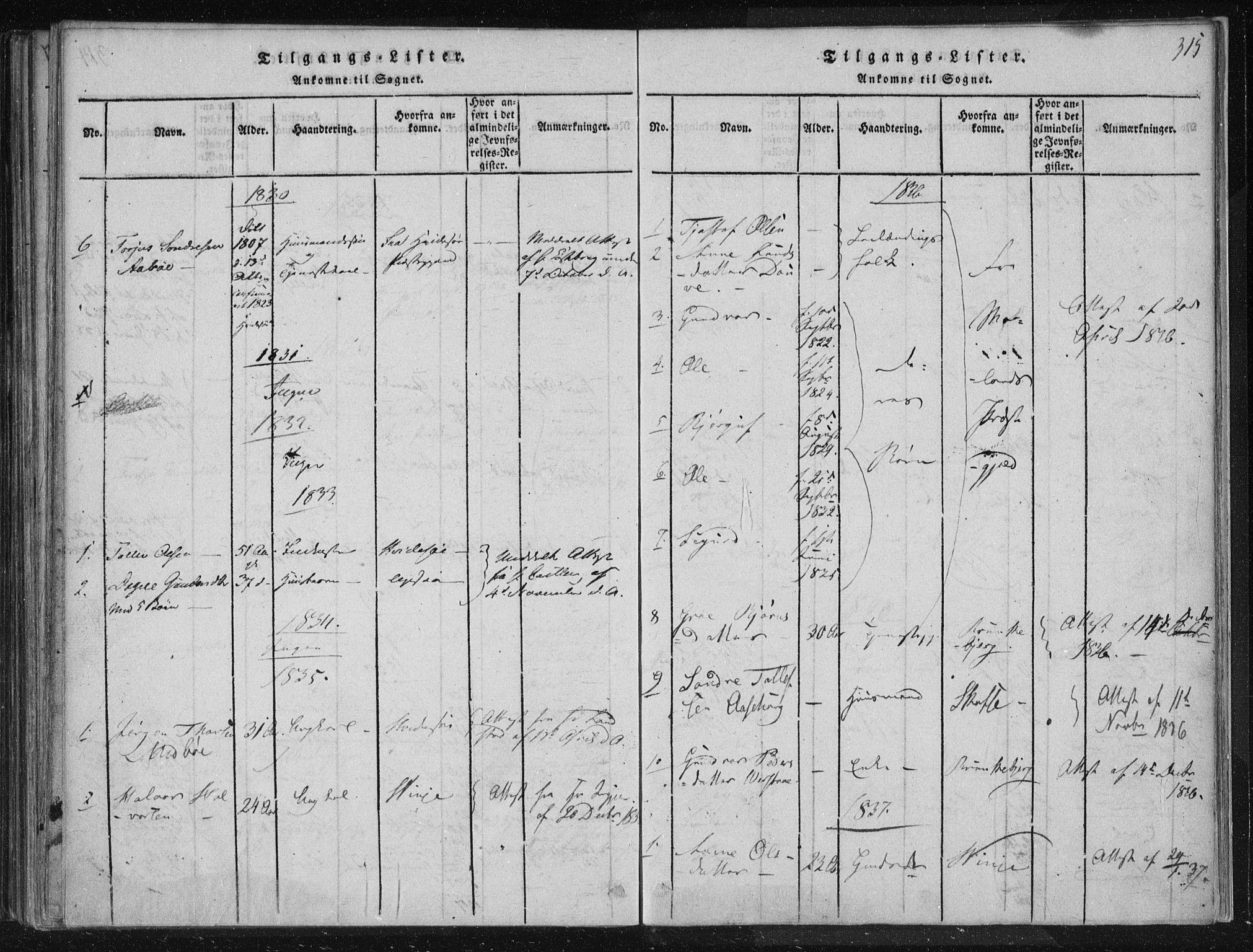 SAKO, Lårdal kirkebøker, F/Fc/L0001: Ministerialbok nr. III 1, 1815-1860, s. 315