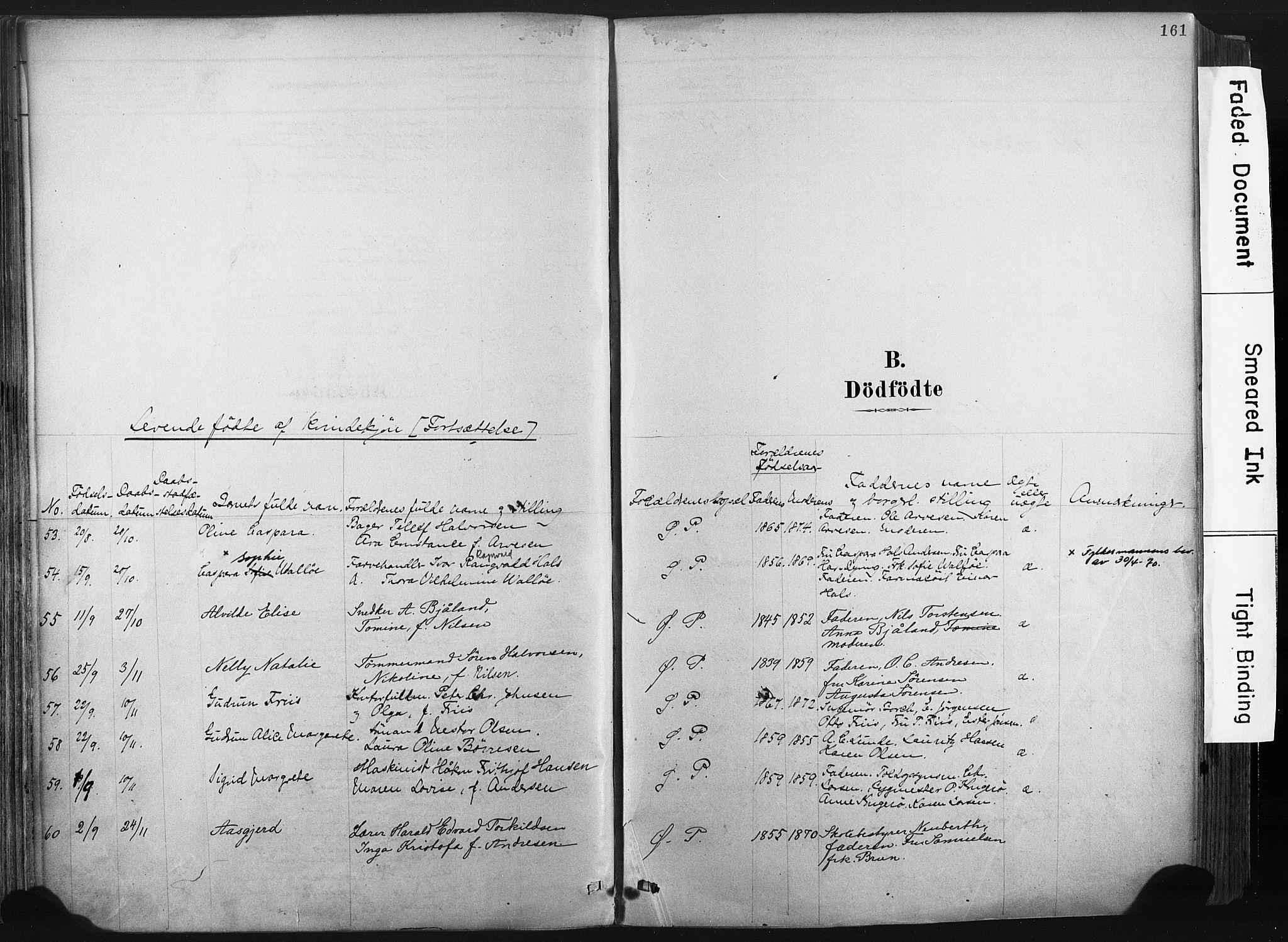 SAKO, Porsgrunn kirkebøker , F/Fa/L0008: Ministerialbok nr. 8, 1878-1895, s. 161