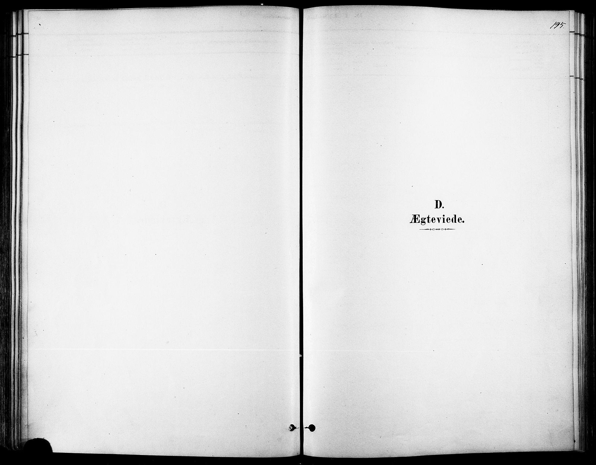 SAT, Ministerialprotokoller, klokkerbøker og fødselsregistre - Møre og Romsdal, 529/L0454: Ministerialbok nr. 529A04, 1878-1885, s. 195