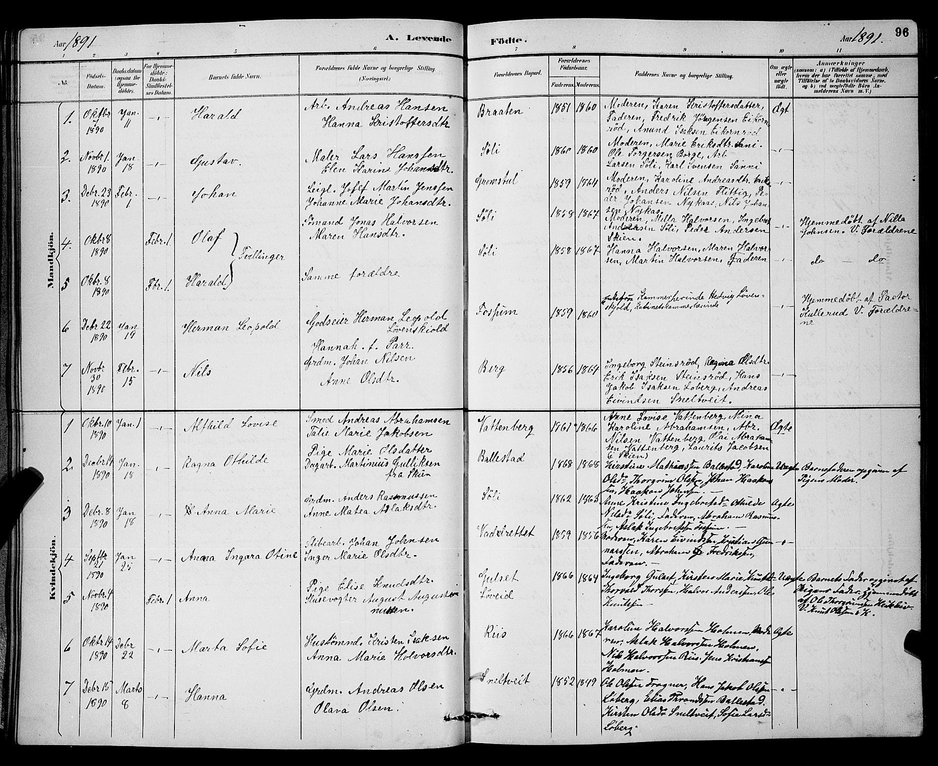 SAKO, Gjerpen kirkebøker, G/Ga/L0002: Klokkerbok nr. I 2, 1883-1900, s. 96