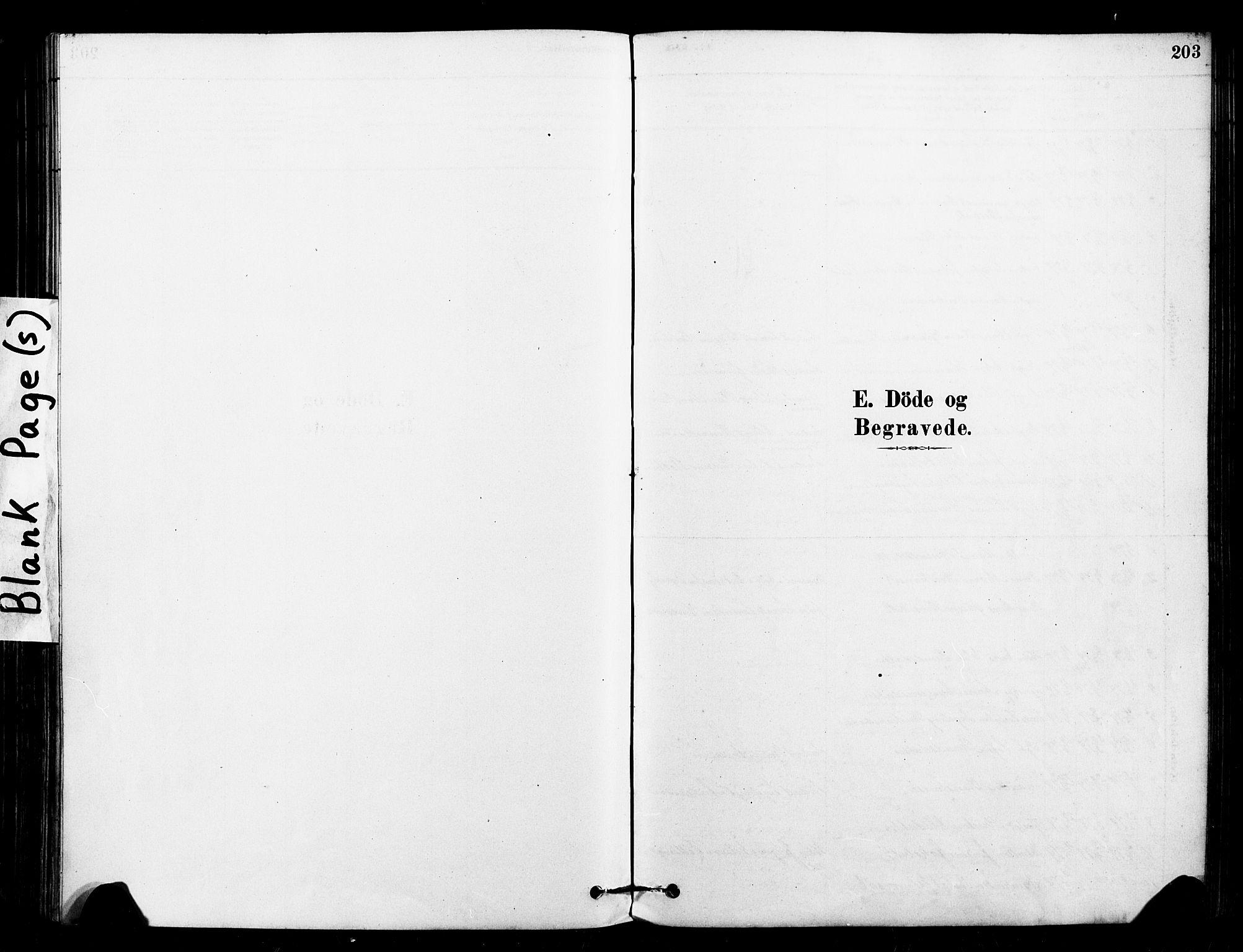 SAT, Ministerialprotokoller, klokkerbøker og fødselsregistre - Sør-Trøndelag, 640/L0578: Ministerialbok nr. 640A03, 1879-1889, s. 203
