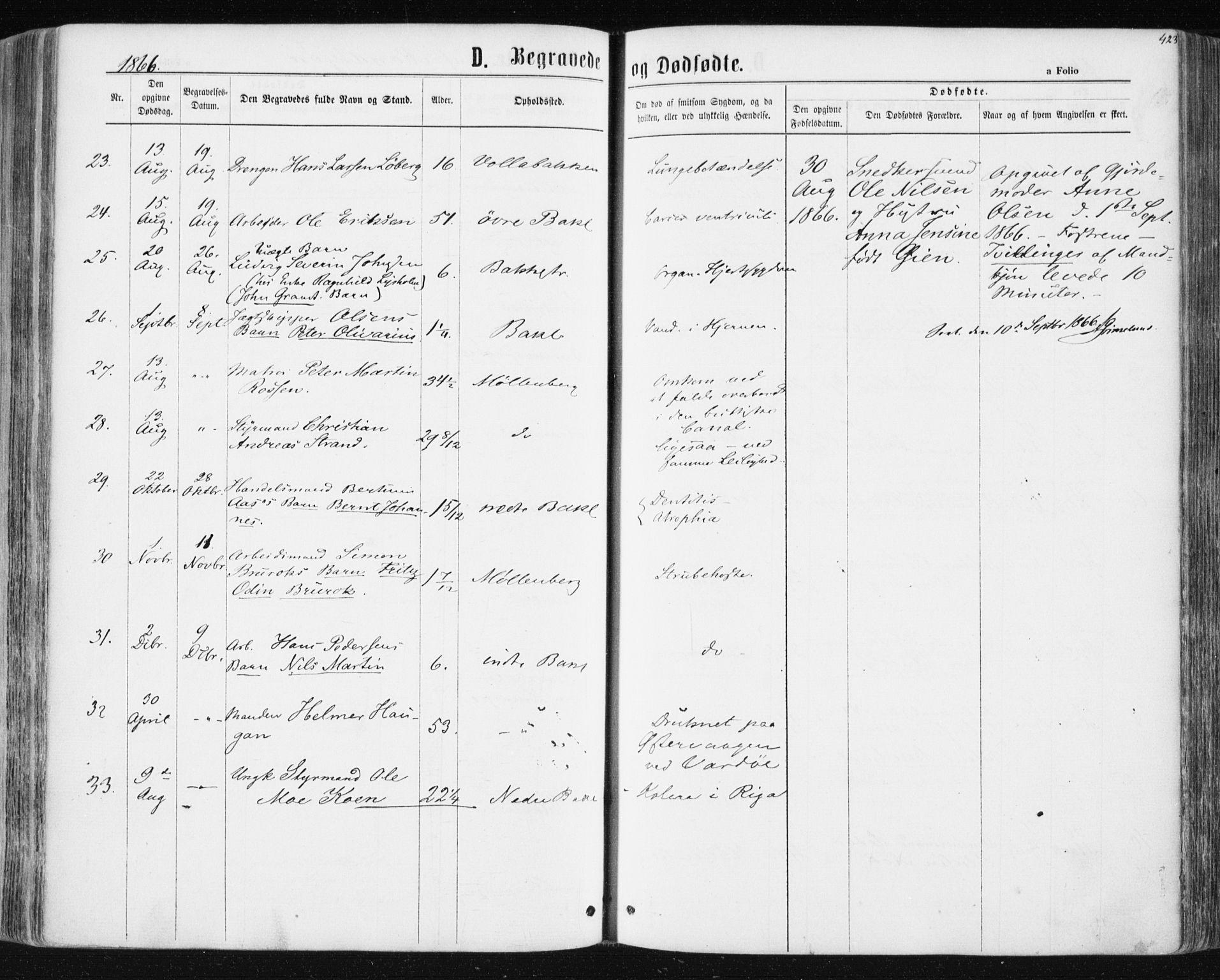 SAT, Ministerialprotokoller, klokkerbøker og fødselsregistre - Sør-Trøndelag, 604/L0186: Ministerialbok nr. 604A07, 1866-1877, s. 423