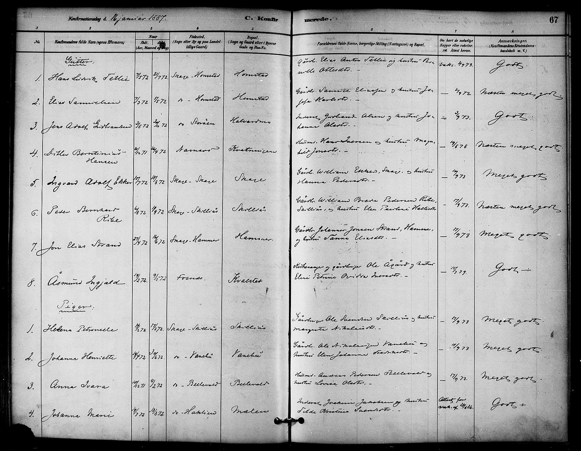 SAT, Ministerialprotokoller, klokkerbøker og fødselsregistre - Nord-Trøndelag, 766/L0563: Ministerialbok nr. 767A01, 1881-1899, s. 67