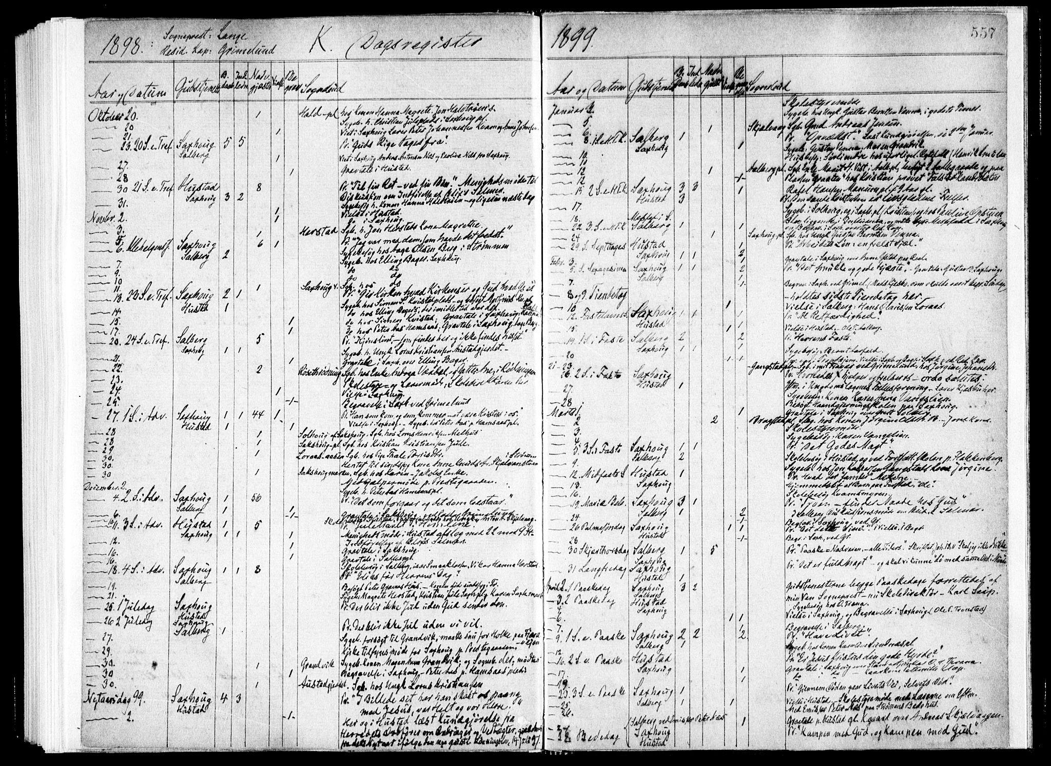 SAT, Ministerialprotokoller, klokkerbøker og fødselsregistre - Nord-Trøndelag, 730/L0285: Ministerialbok nr. 730A10, 1879-1914, s. 557
