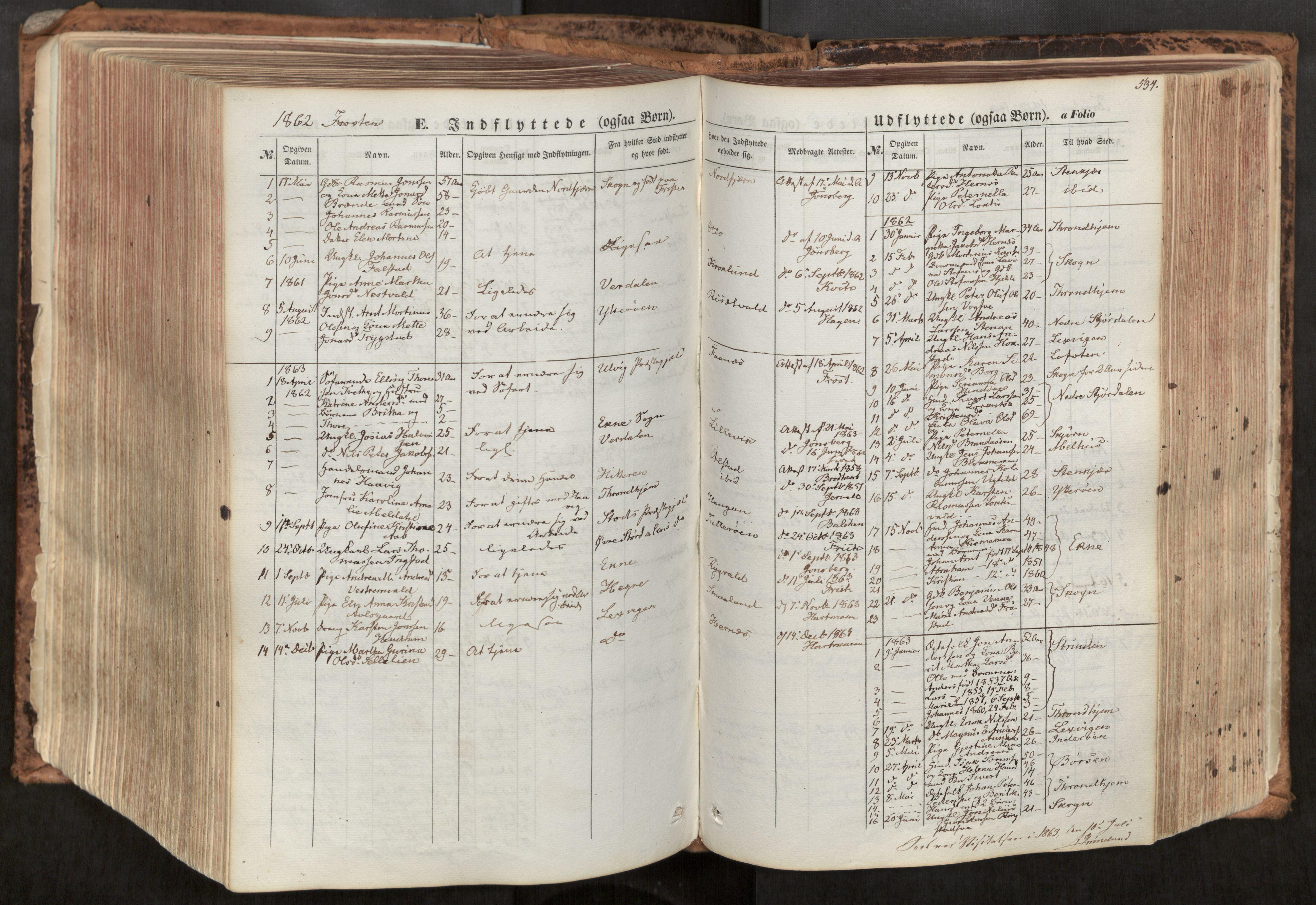 SAT, Ministerialprotokoller, klokkerbøker og fødselsregistre - Nord-Trøndelag, 713/L0116: Ministerialbok nr. 713A07, 1850-1877, s. 534