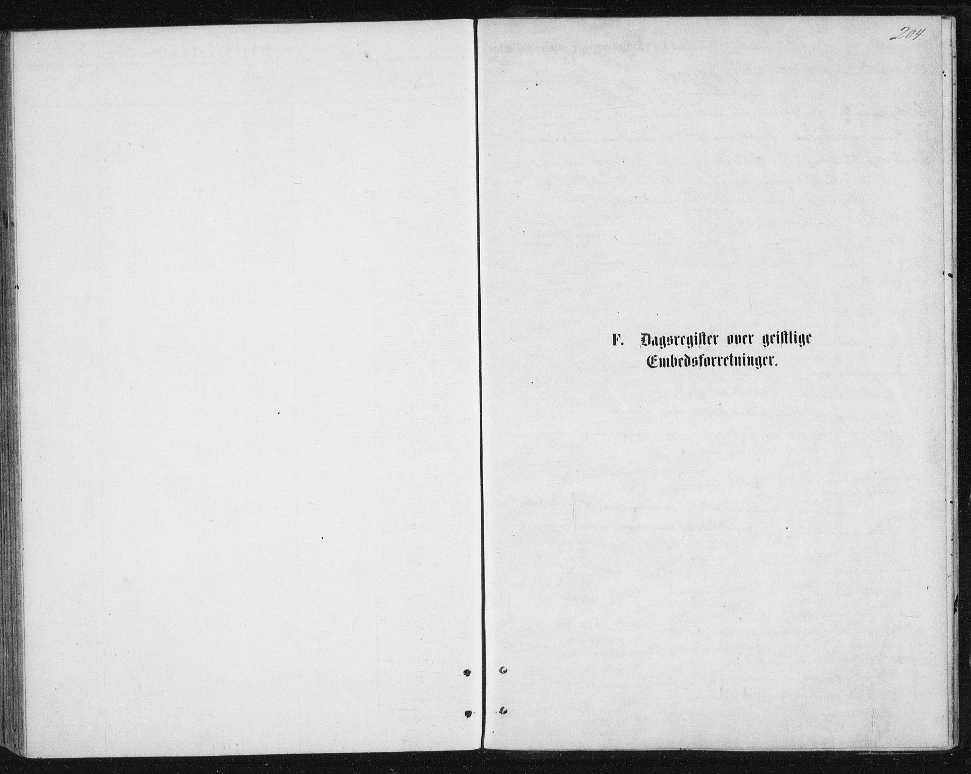 SAT, Ministerialprotokoller, klokkerbøker og fødselsregistre - Nordland, 888/L1243: Ministerialbok nr. 888A09, 1876-1879, s. 204