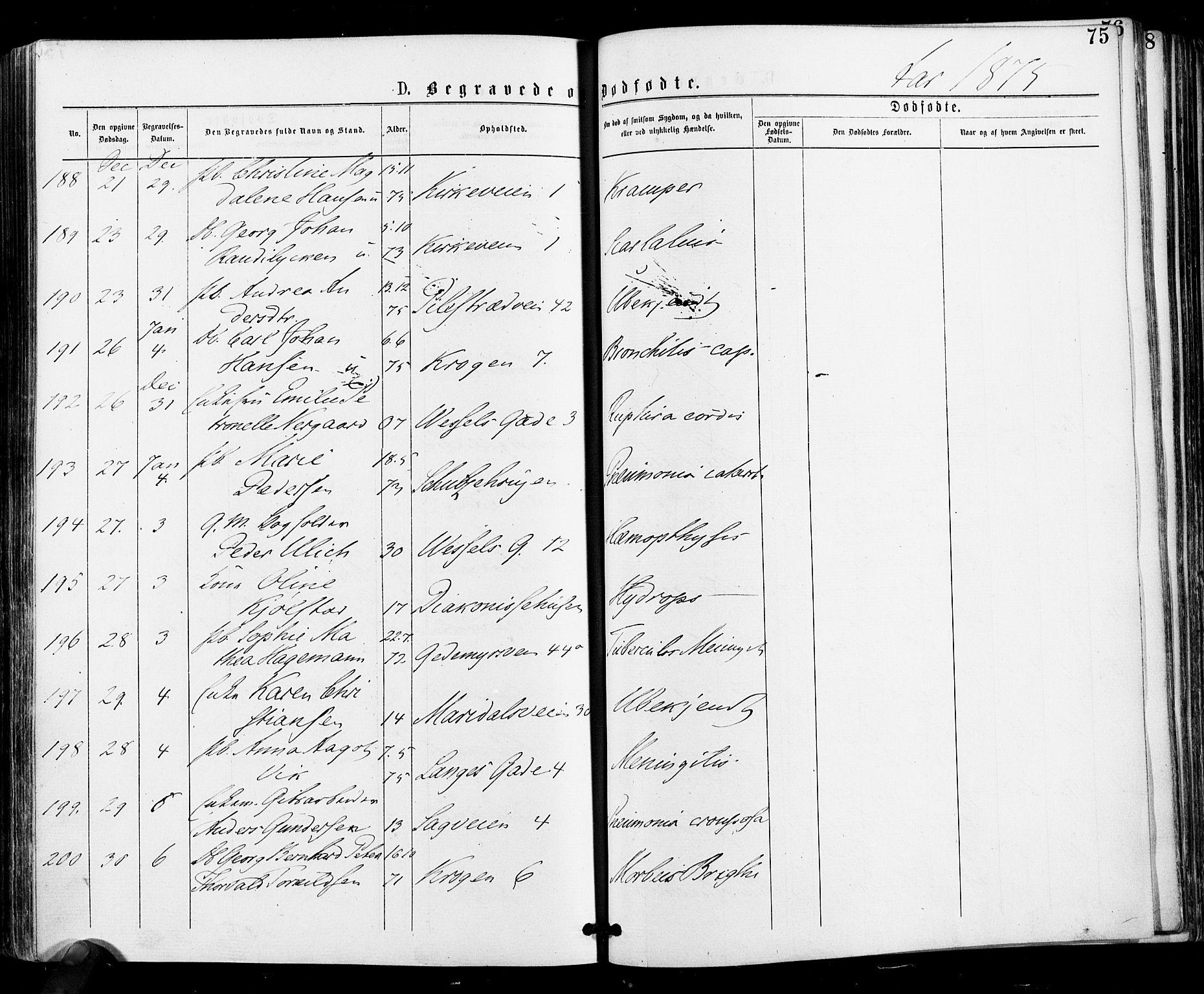 SAO, Gamle Aker prestekontor Kirkebøker, F/L0004: Ministerialbok nr. 4, 1872-1879, s. 75