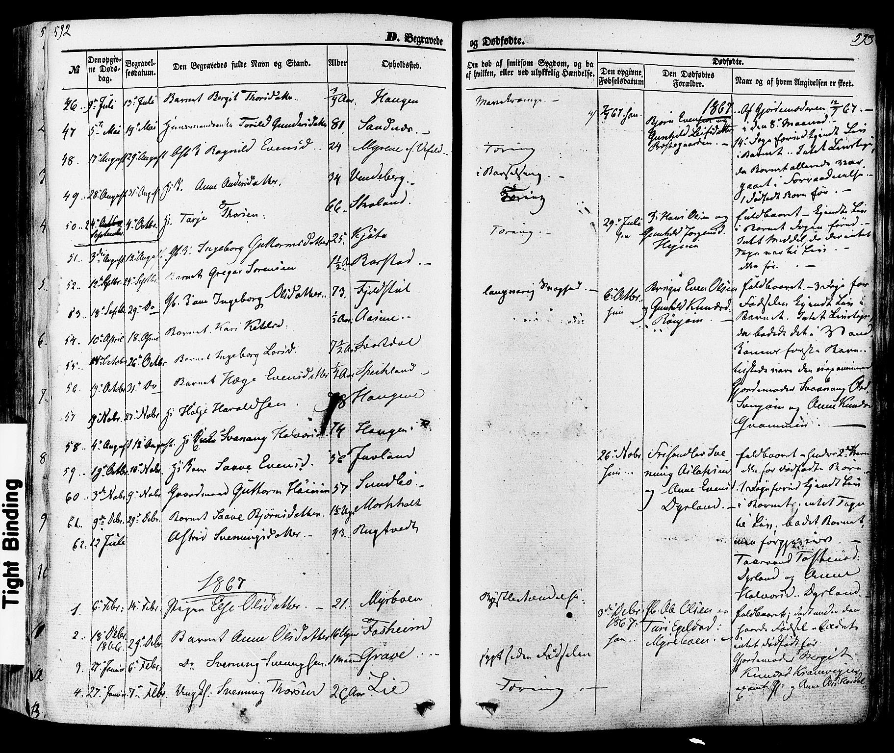 SAKO, Seljord kirkebøker, F/Fa/L0013: Ministerialbok nr. I 13, 1866-1876, s. 592-593