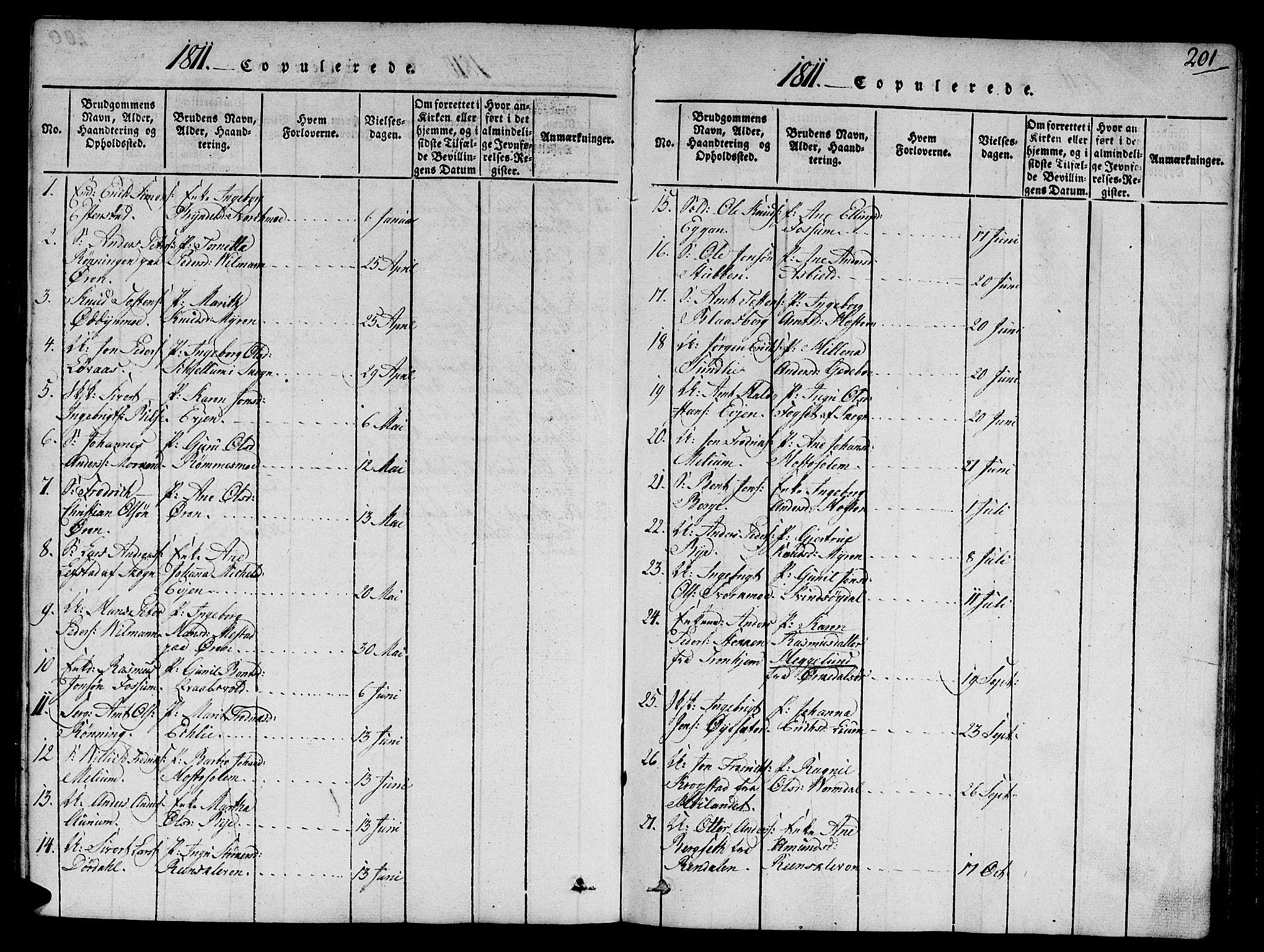 SAT, Ministerialprotokoller, klokkerbøker og fødselsregistre - Sør-Trøndelag, 668/L0803: Ministerialbok nr. 668A03, 1800-1826, s. 201
