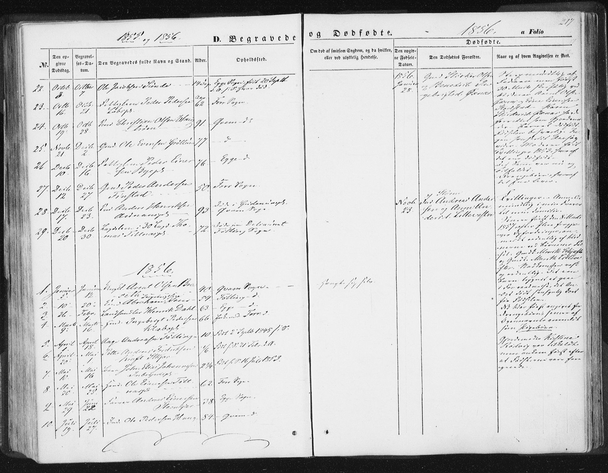 SAT, Ministerialprotokoller, klokkerbøker og fødselsregistre - Nord-Trøndelag, 746/L0446: Ministerialbok nr. 746A05, 1846-1859, s. 217