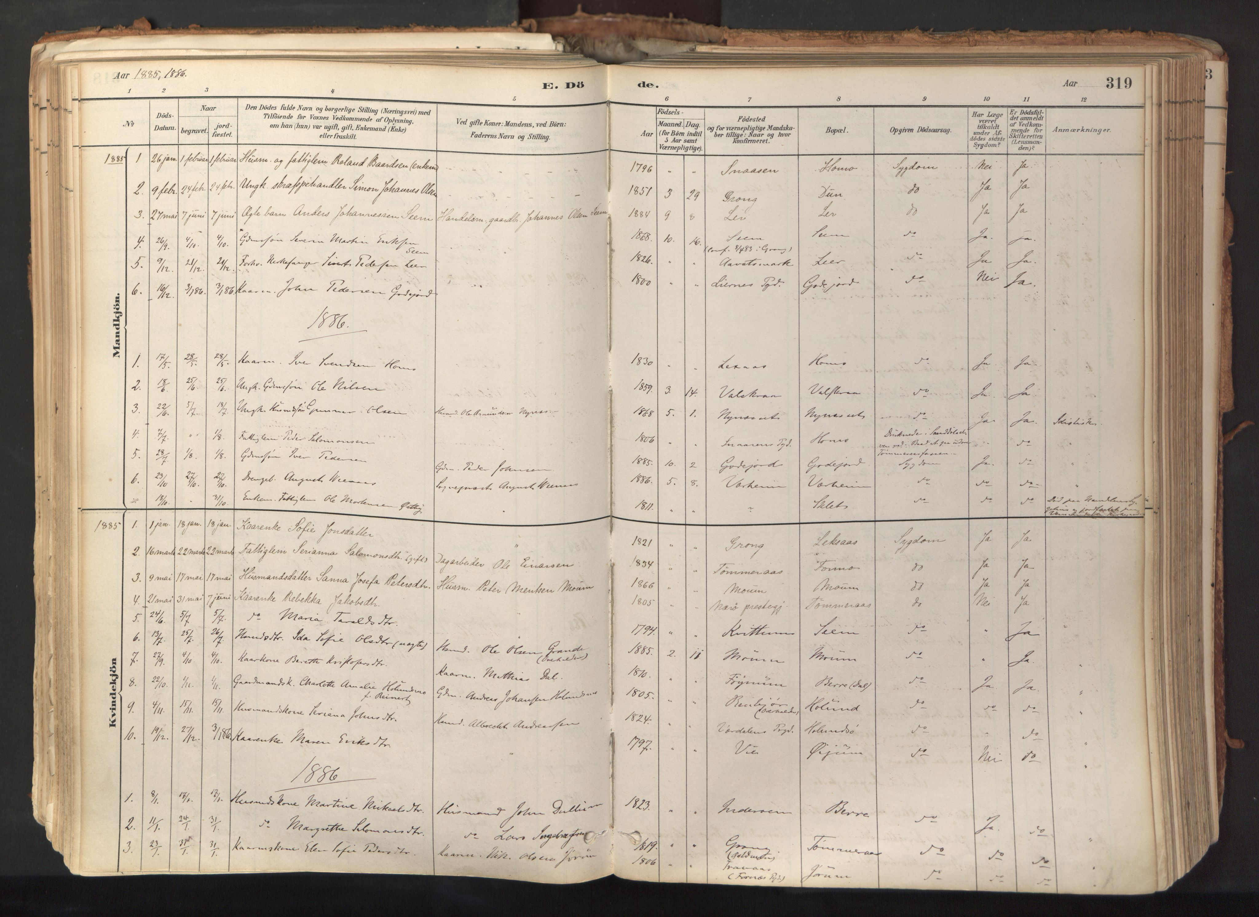SAT, Ministerialprotokoller, klokkerbøker og fødselsregistre - Nord-Trøndelag, 758/L0519: Ministerialbok nr. 758A04, 1880-1926, s. 319