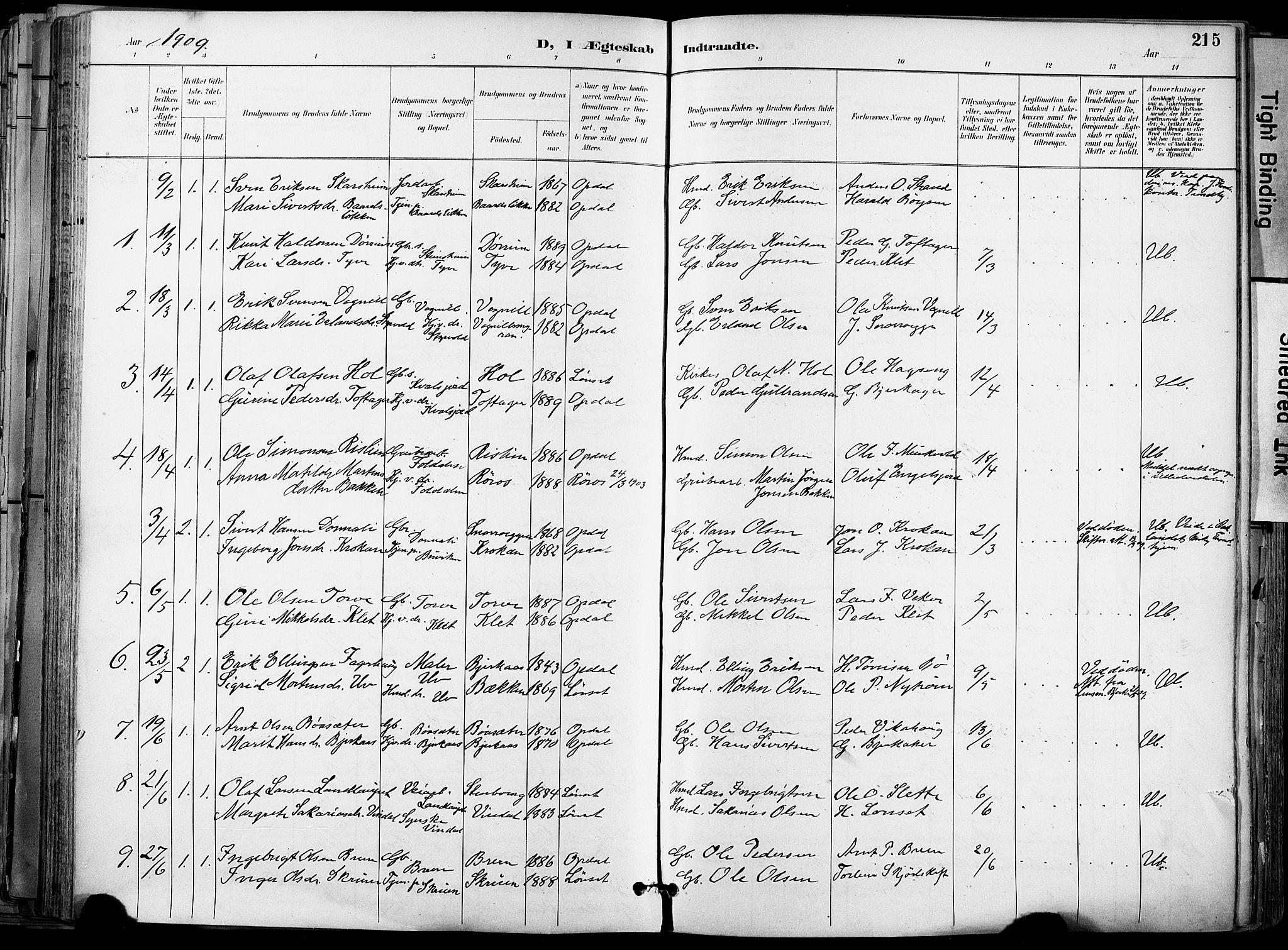 SAT, Ministerialprotokoller, klokkerbøker og fødselsregistre - Sør-Trøndelag, 678/L0902: Ministerialbok nr. 678A11, 1895-1911, s. 215
