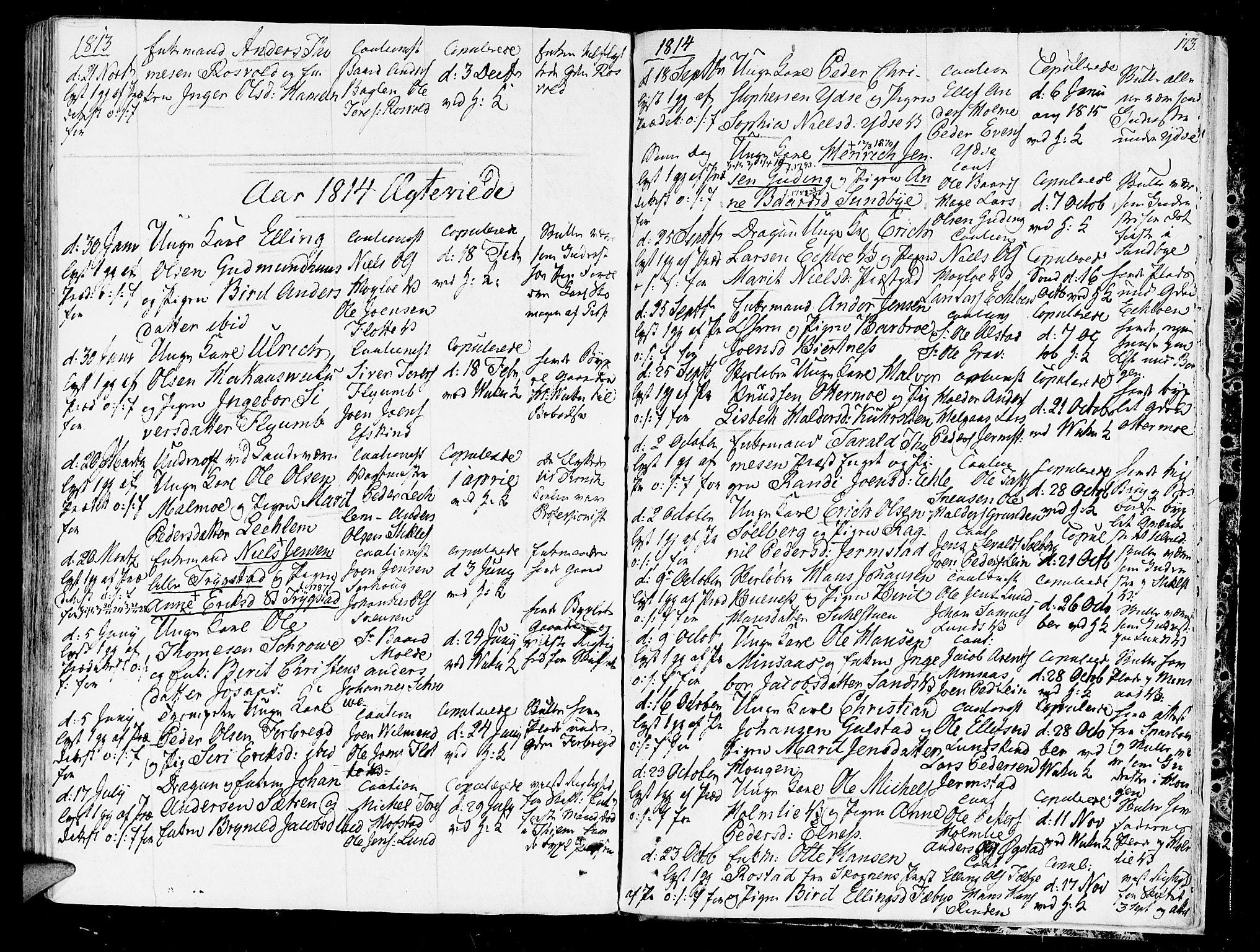 SAT, Ministerialprotokoller, klokkerbøker og fødselsregistre - Nord-Trøndelag, 723/L0233: Ministerialbok nr. 723A04, 1805-1816, s. 173