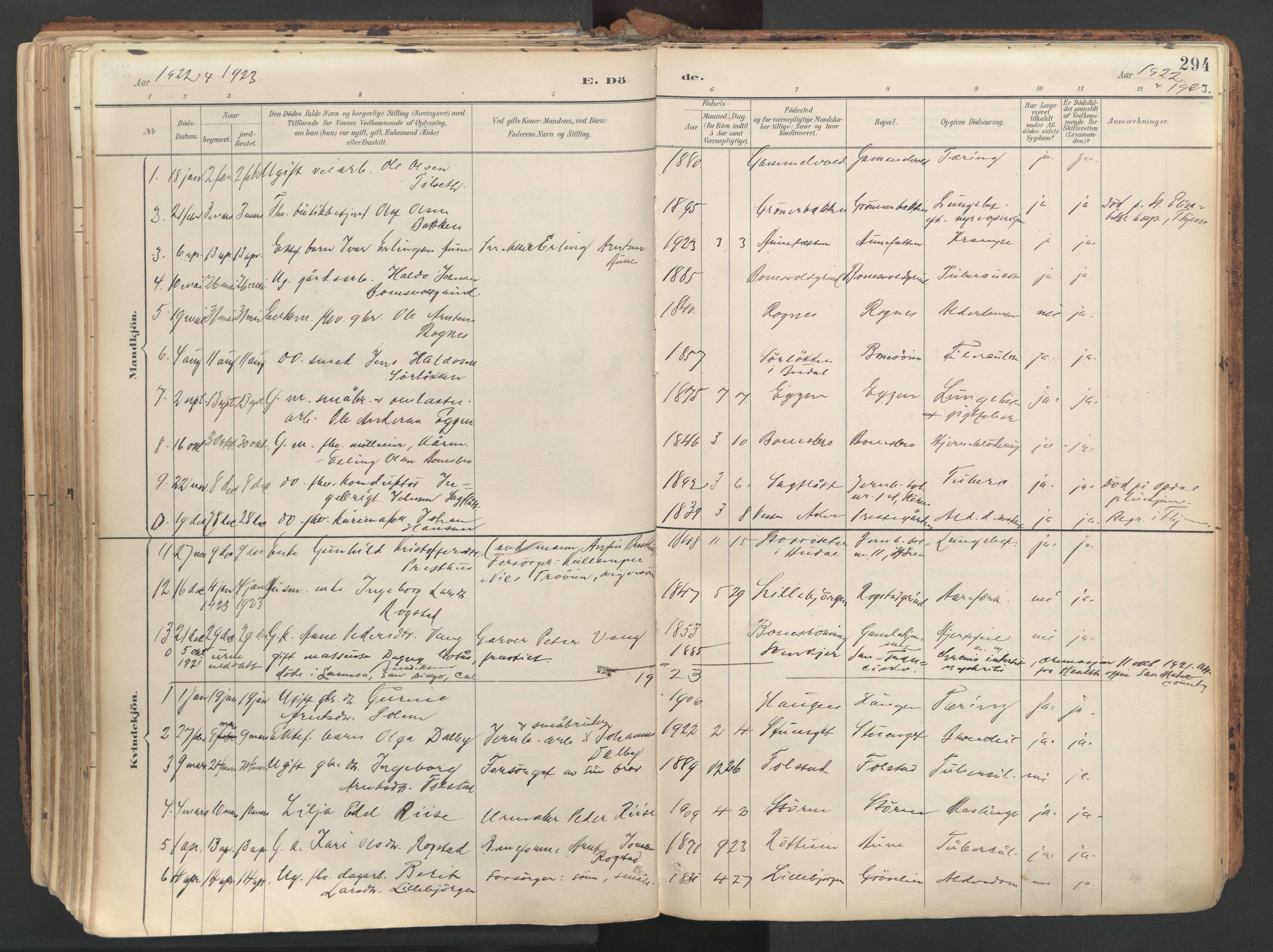 SAT, Ministerialprotokoller, klokkerbøker og fødselsregistre - Sør-Trøndelag, 687/L1004: Ministerialbok nr. 687A10, 1891-1923, s. 294