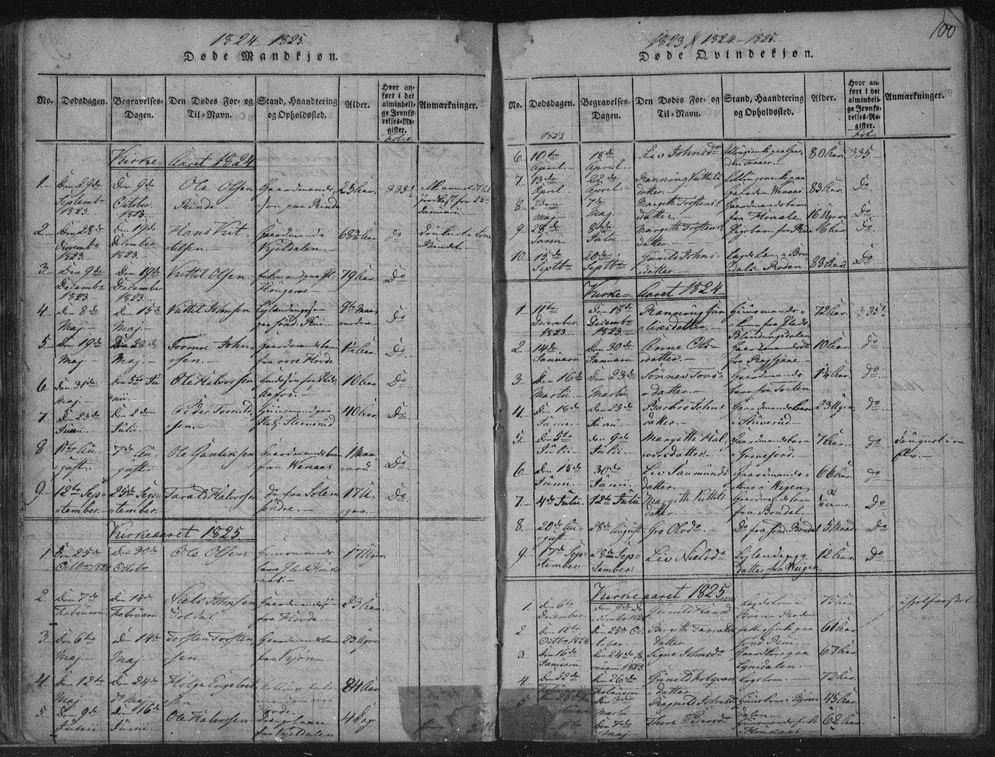 SAKO, Hjartdal kirkebøker, F/Fc/L0001: Ministerialbok nr. III 1, 1815-1843, s. 100