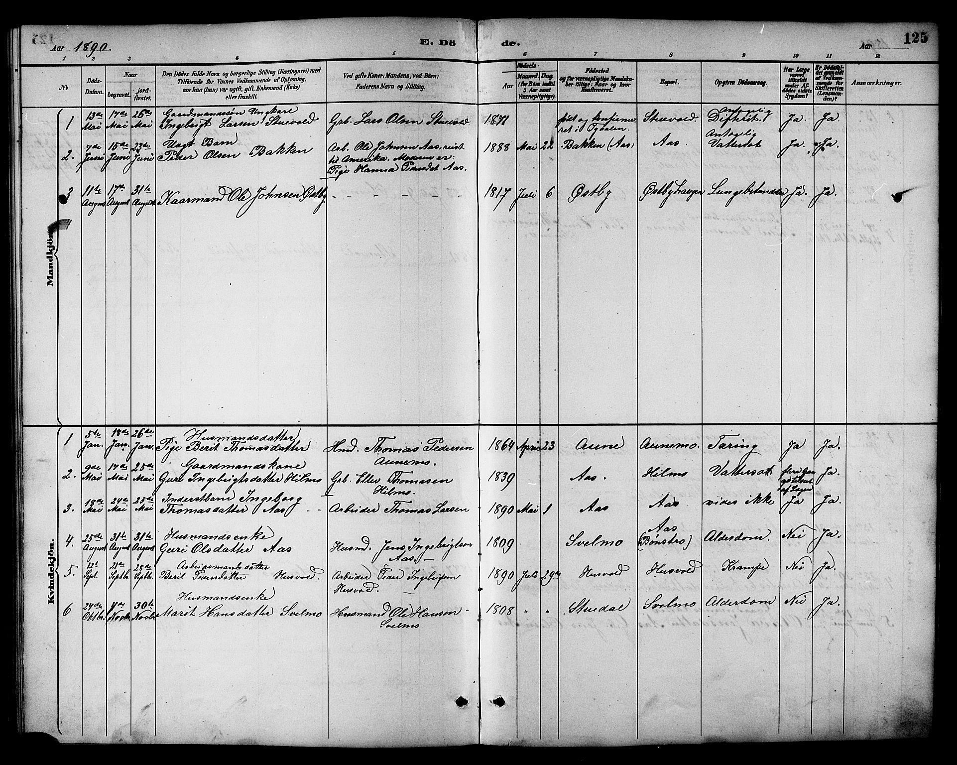 SAT, Ministerialprotokoller, klokkerbøker og fødselsregistre - Sør-Trøndelag, 698/L1167: Klokkerbok nr. 698C04, 1888-1907, s. 125