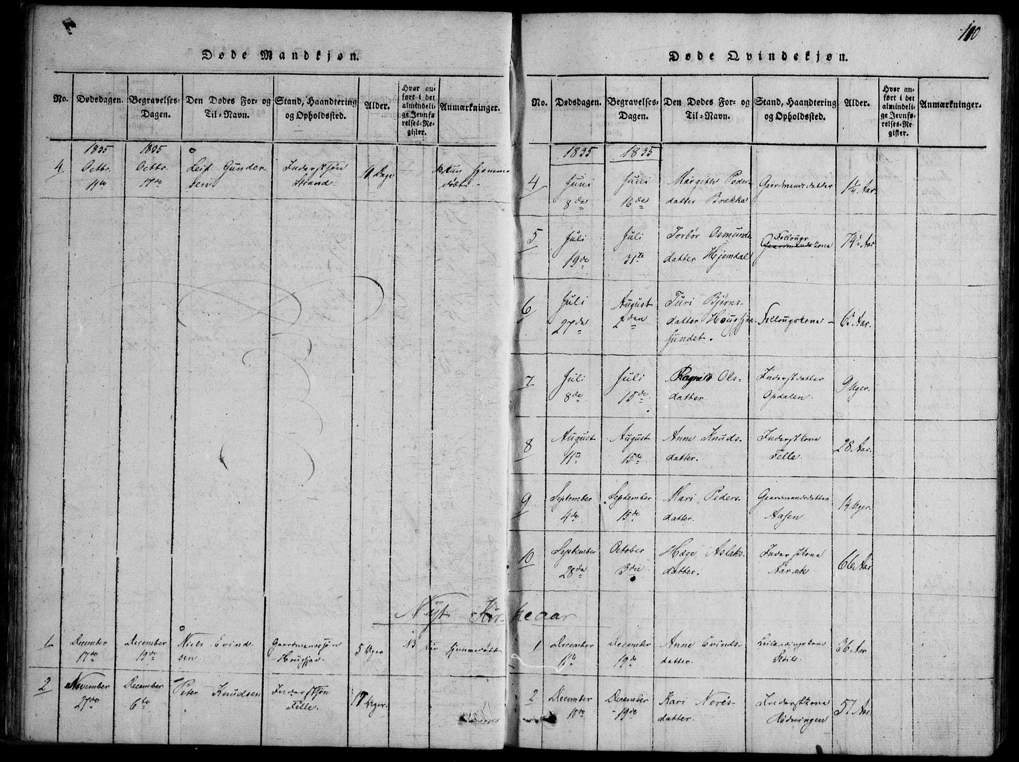 SAKO, Nissedal kirkebøker, F/Fb/L0001: Ministerialbok nr. II 1, 1814-1845, s. 110