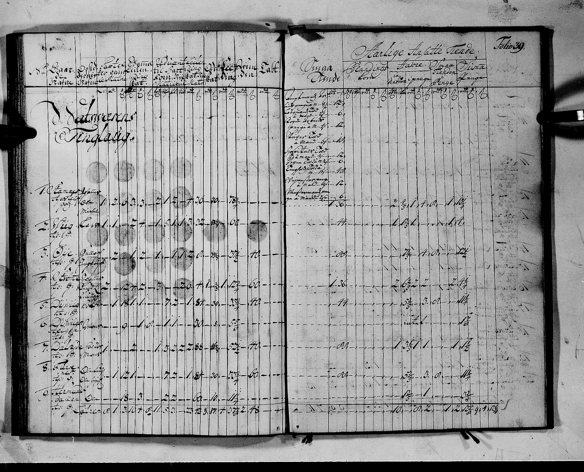 RA, Rentekammeret inntil 1814, Realistisk ordnet avdeling, N/Nb/Nbf/L0142: Voss matrikkelprotokoll, 1723, s. 38b-39a