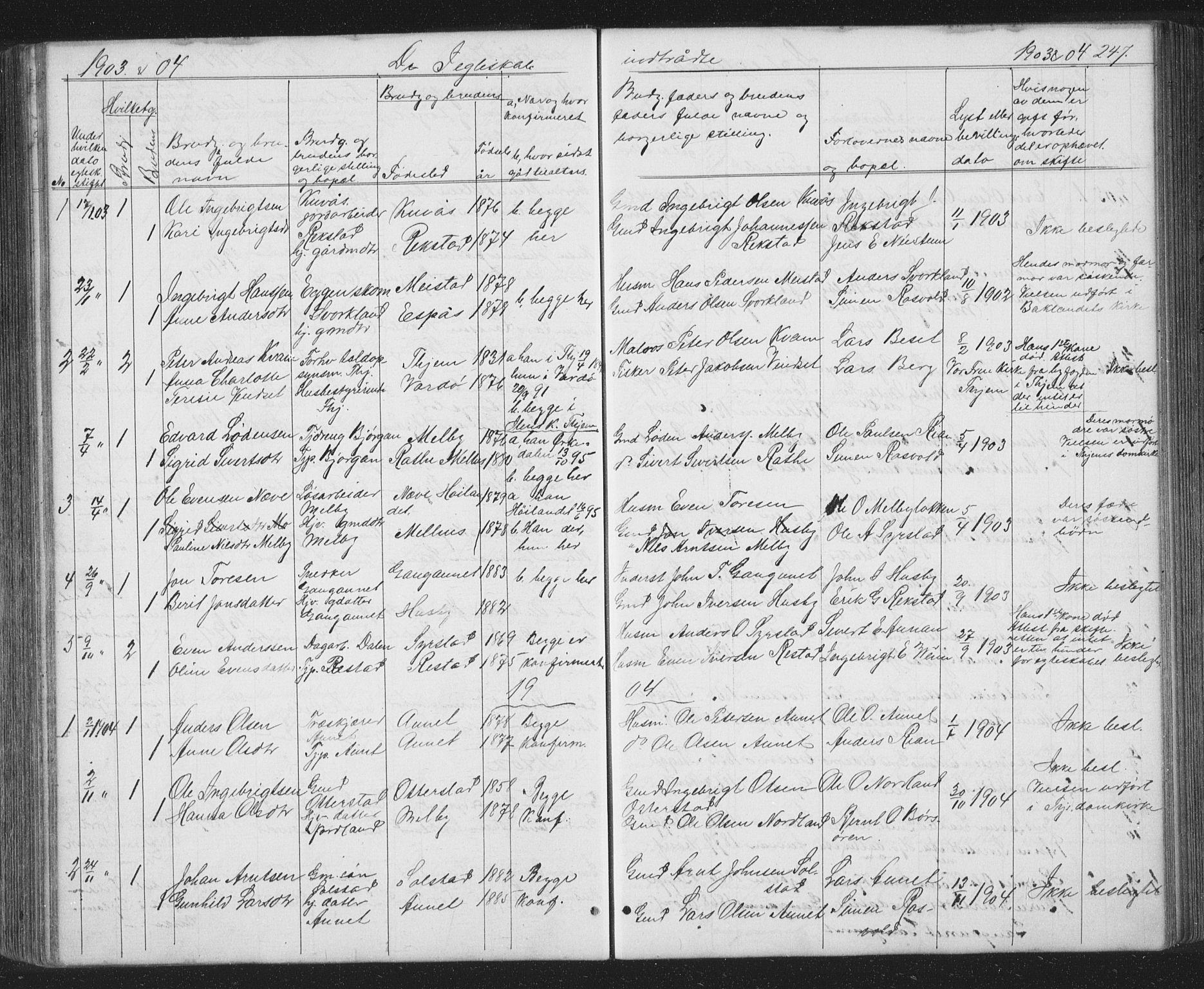 SAT, Ministerialprotokoller, klokkerbøker og fødselsregistre - Sør-Trøndelag, 667/L0798: Klokkerbok nr. 667C03, 1867-1929, s. 247