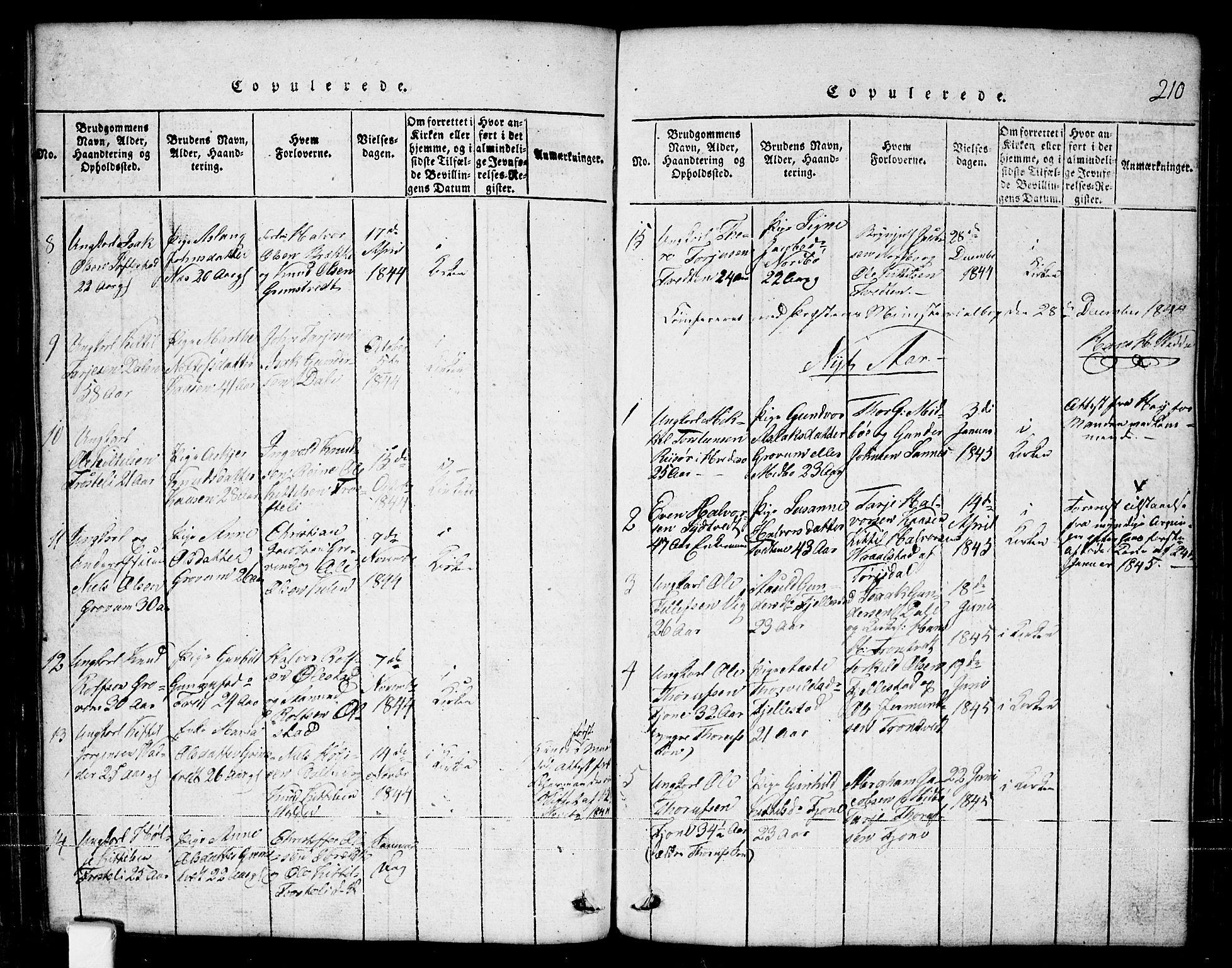 SAKO, Nissedal kirkebøker, G/Ga/L0001: Klokkerbok nr. I 1, 1814-1860, s. 210