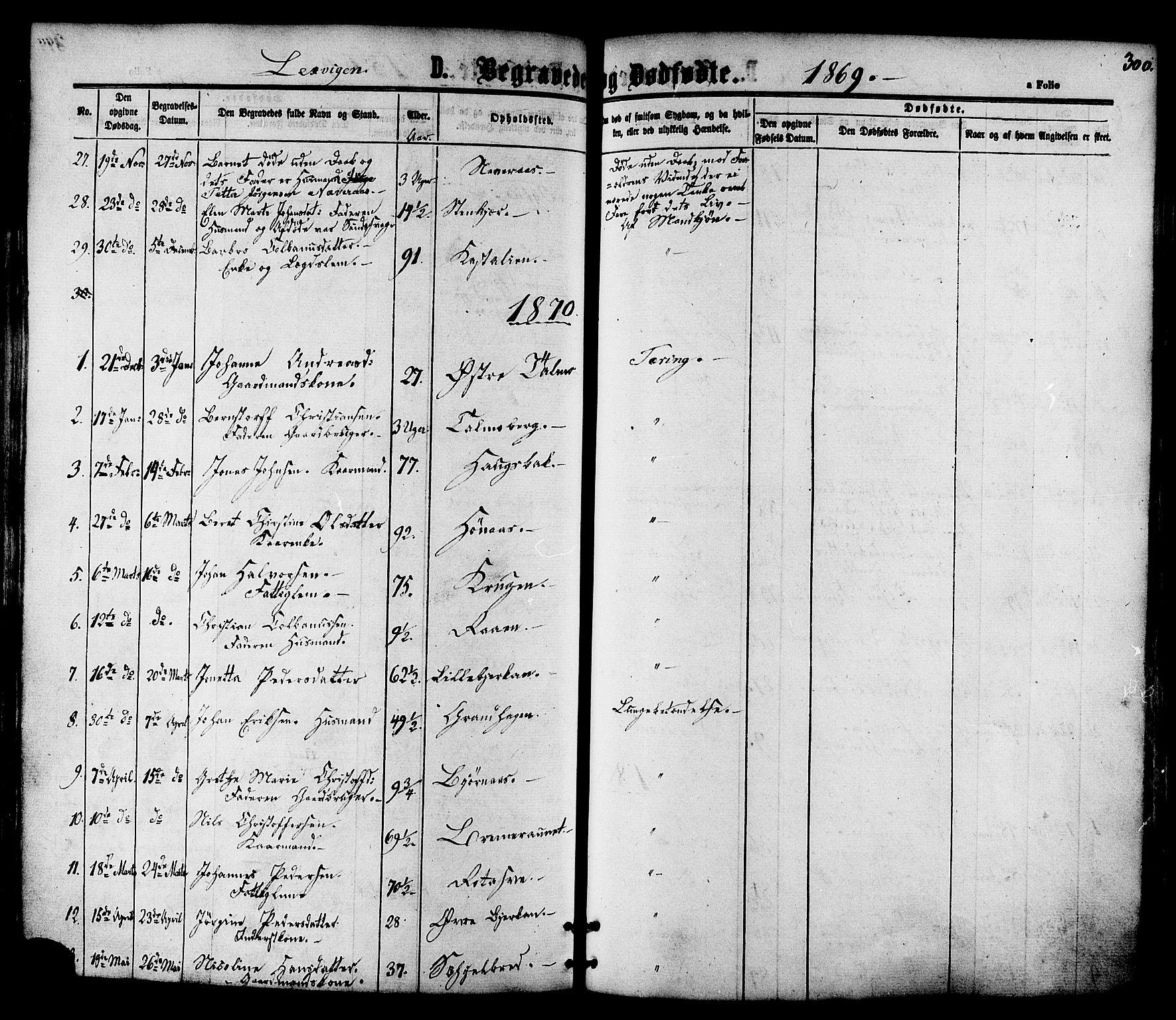 SAT, Ministerialprotokoller, klokkerbøker og fødselsregistre - Nord-Trøndelag, 701/L0009: Ministerialbok nr. 701A09 /1, 1864-1882, s. 300