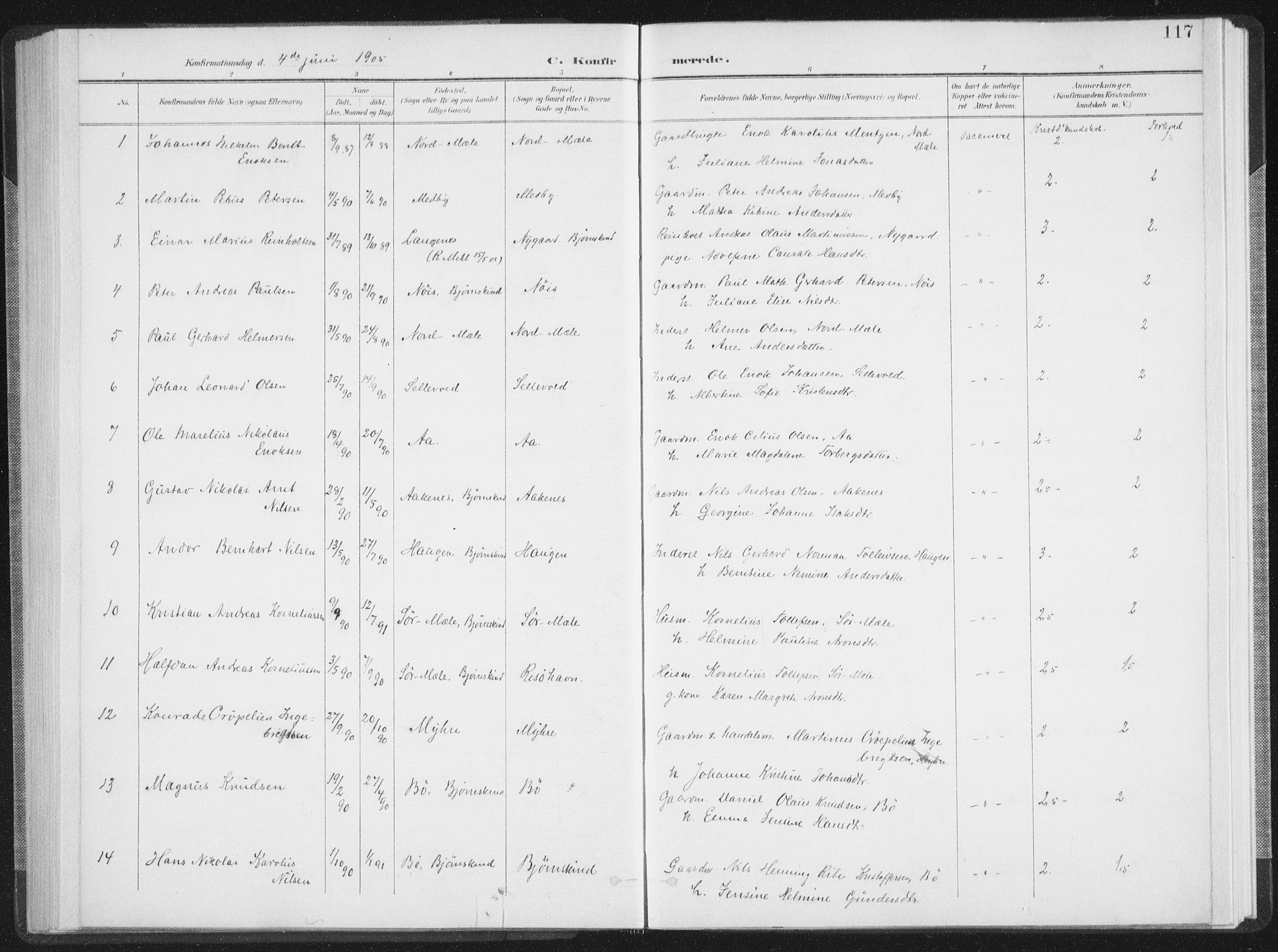 SAT, Ministerialprotokoller, klokkerbøker og fødselsregistre - Nordland, 897/L1400: Ministerialbok nr. 897A07, 1897-1908, s. 117