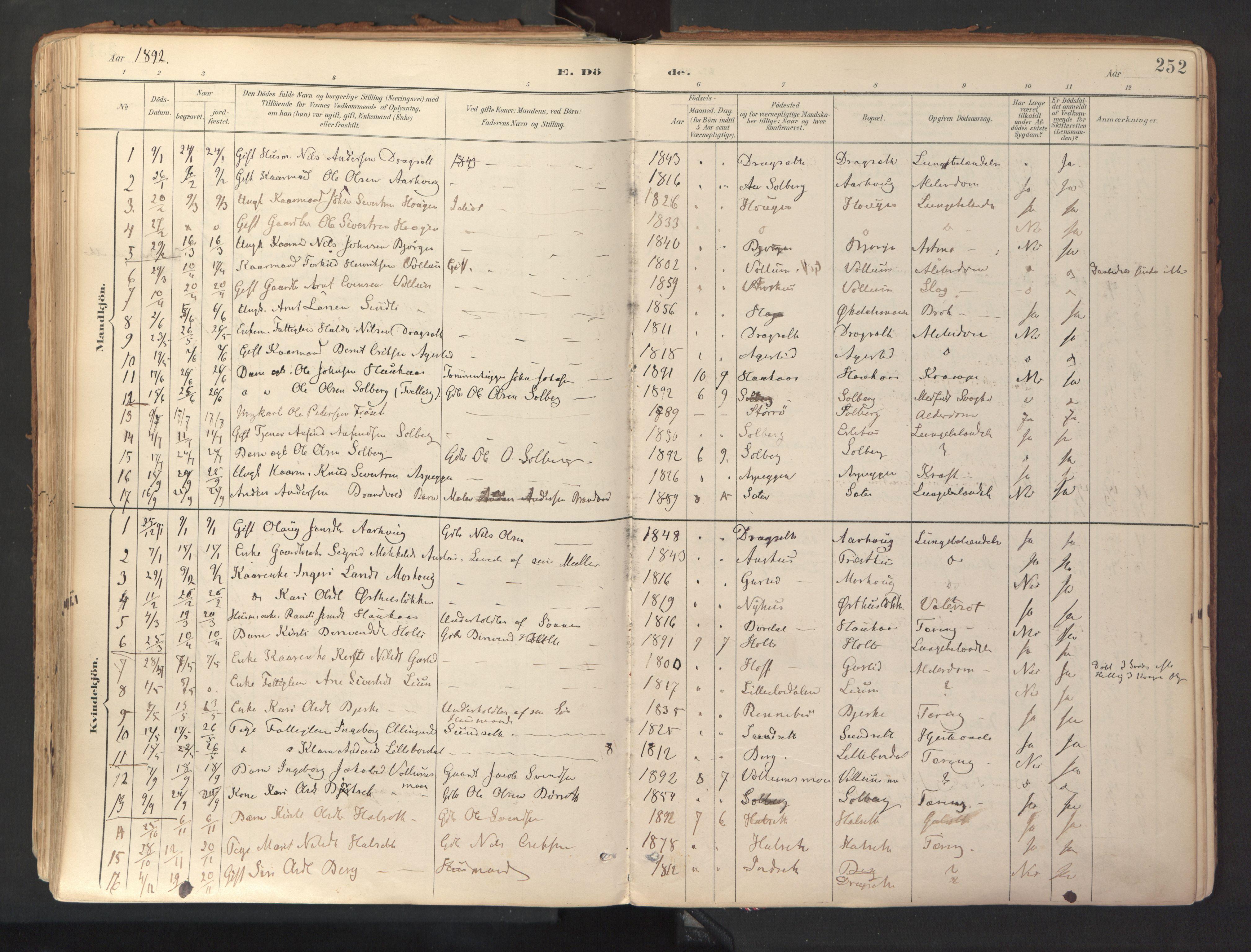 SAT, Ministerialprotokoller, klokkerbøker og fødselsregistre - Sør-Trøndelag, 689/L1041: Ministerialbok nr. 689A06, 1891-1923, s. 252