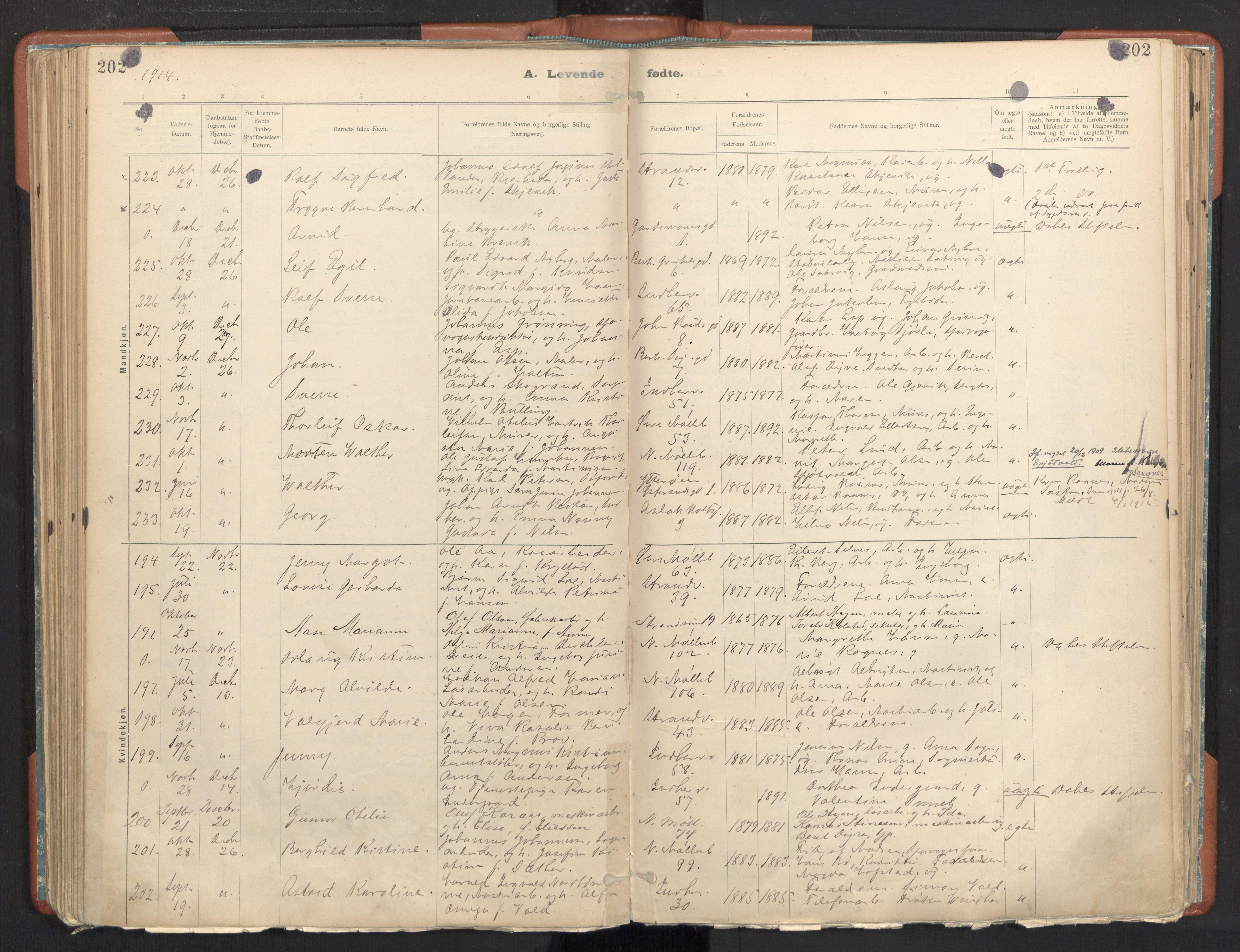 SAT, Ministerialprotokoller, klokkerbøker og fødselsregistre - Sør-Trøndelag, 605/L0243: Ministerialbok nr. 605A05, 1908-1923, s. 202