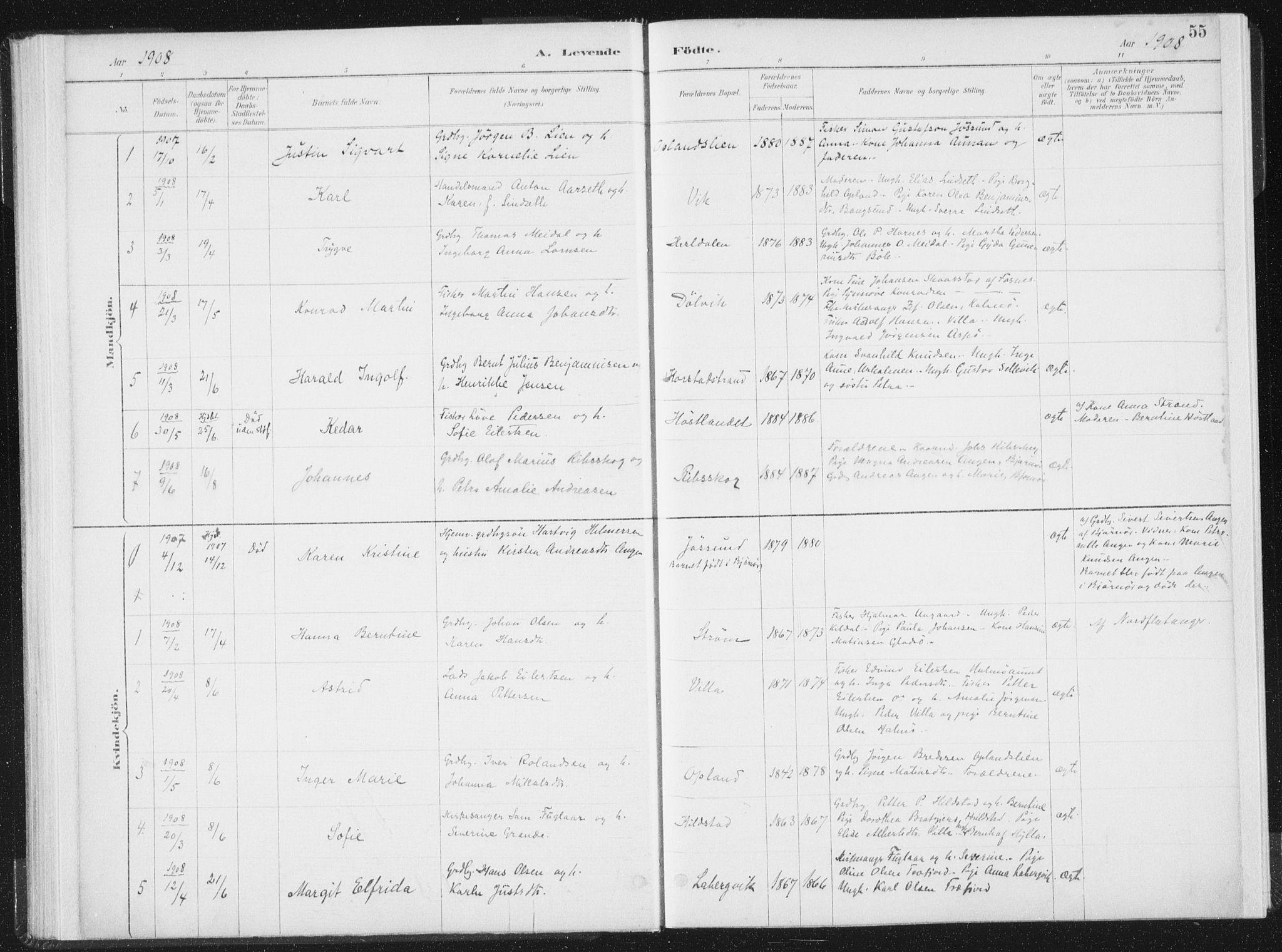 SAT, Ministerialprotokoller, klokkerbøker og fødselsregistre - Nord-Trøndelag, 771/L0597: Ministerialbok nr. 771A04, 1885-1910, s. 55