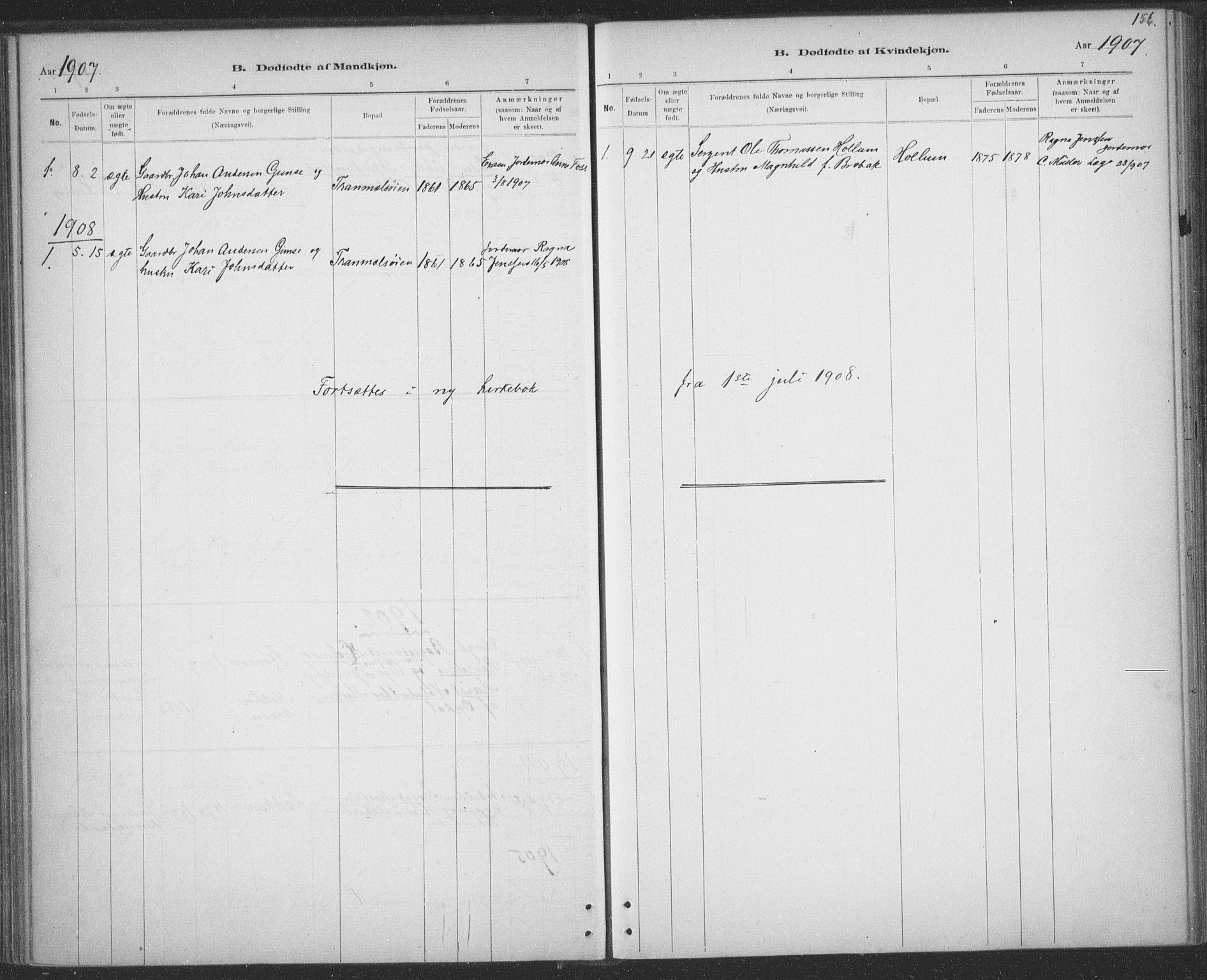 SAT, Ministerialprotokoller, klokkerbøker og fødselsregistre - Sør-Trøndelag, 691/L1085: Ministerialbok nr. 691A17, 1887-1908, s. 156