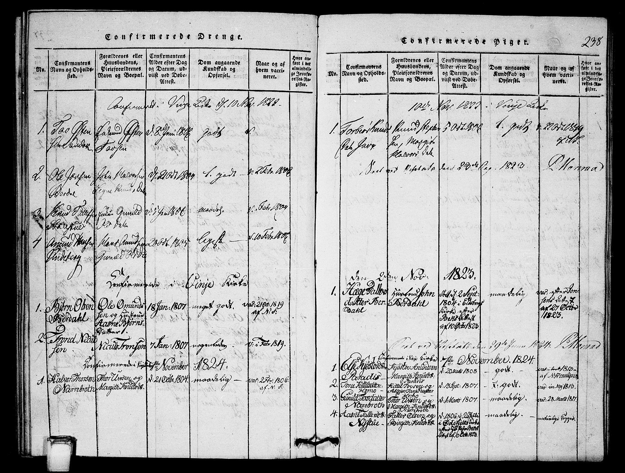 SAKO, Vinje kirkebøker, G/Gb/L0001: Klokkerbok nr. II 1, 1814-1843, s. 238