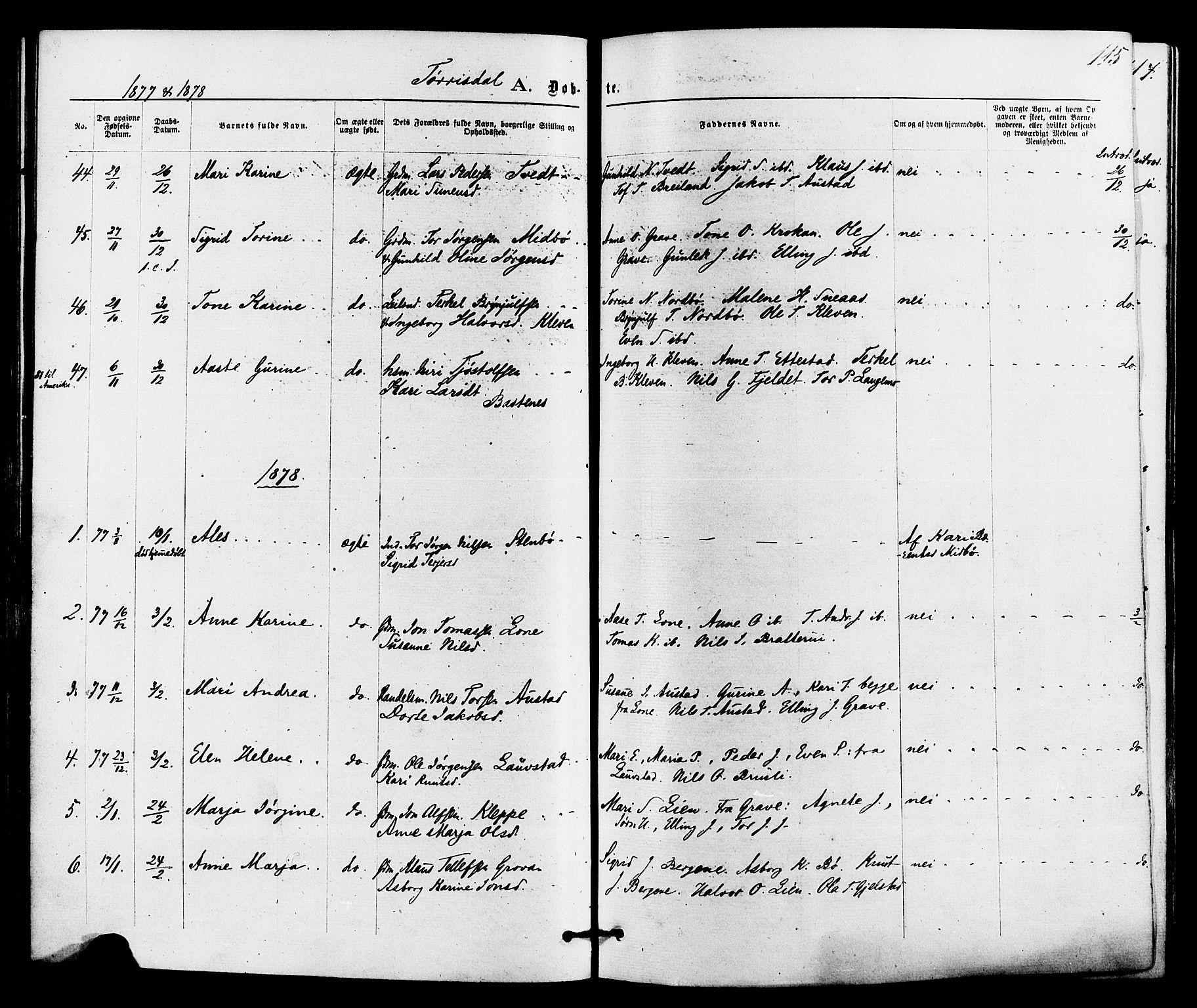 SAKO, Drangedal kirkebøker, F/Fa/L0009: Ministerialbok nr. 9 /2, 1872-1884, s. 115