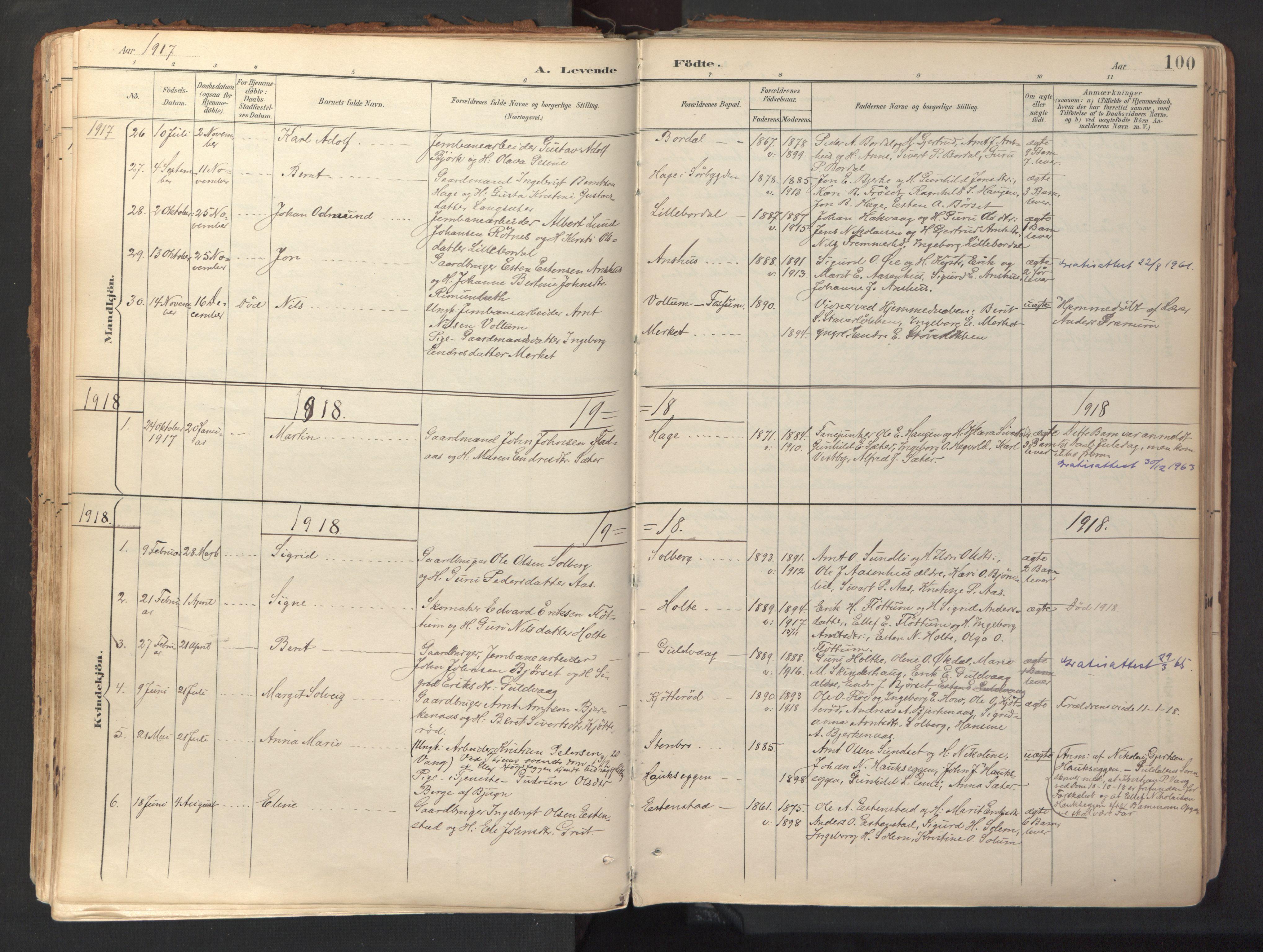SAT, Ministerialprotokoller, klokkerbøker og fødselsregistre - Sør-Trøndelag, 689/L1041: Ministerialbok nr. 689A06, 1891-1923, s. 100