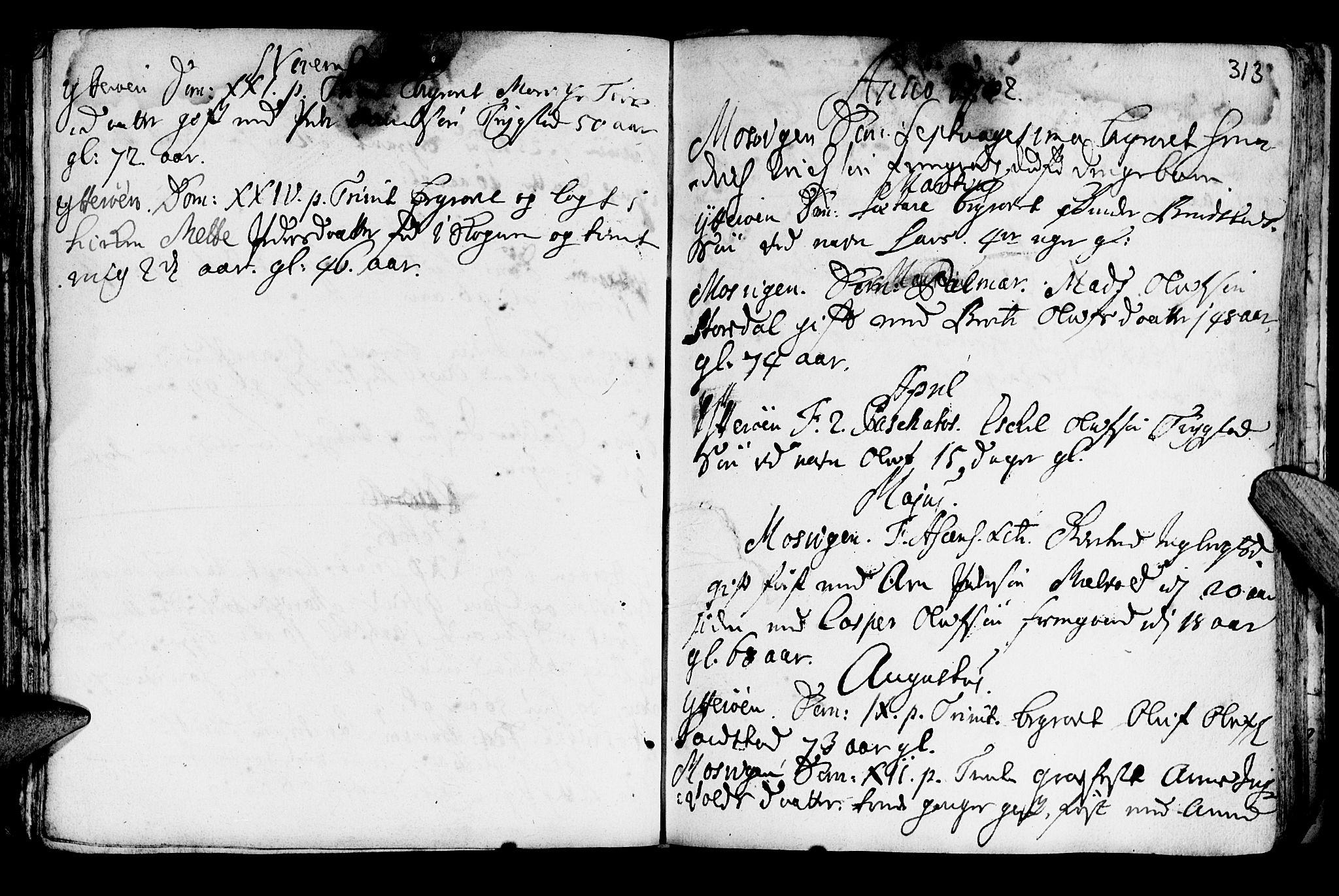 SAT, Ministerialprotokoller, klokkerbøker og fødselsregistre - Nord-Trøndelag, 722/L0215: Ministerialbok nr. 722A02, 1718-1755, s. 313