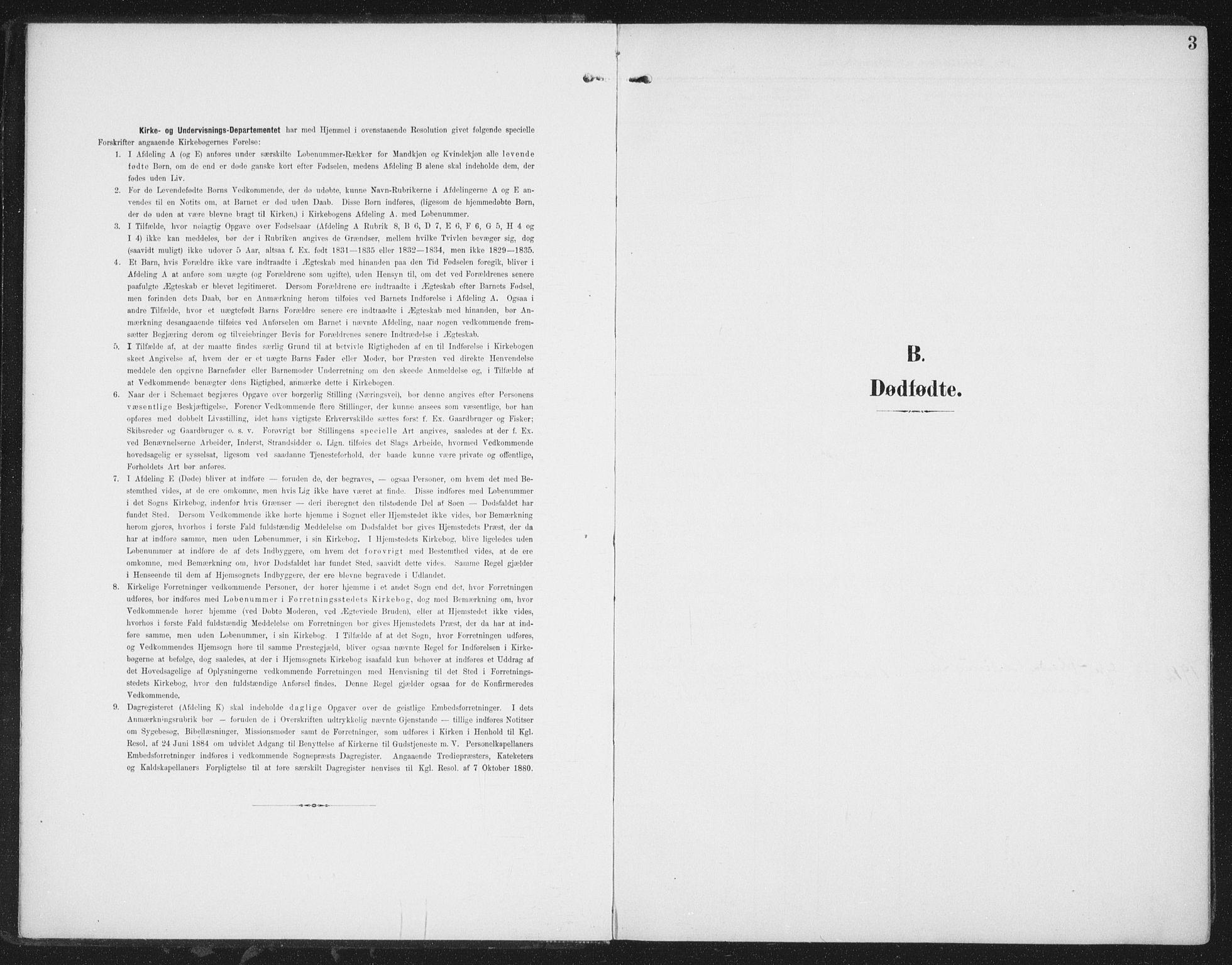 SAT, Ministerialprotokoller, klokkerbøker og fødselsregistre - Nordland, 827/L0403: Ministerialbok nr. 827A15, 1903-1912, s. 3