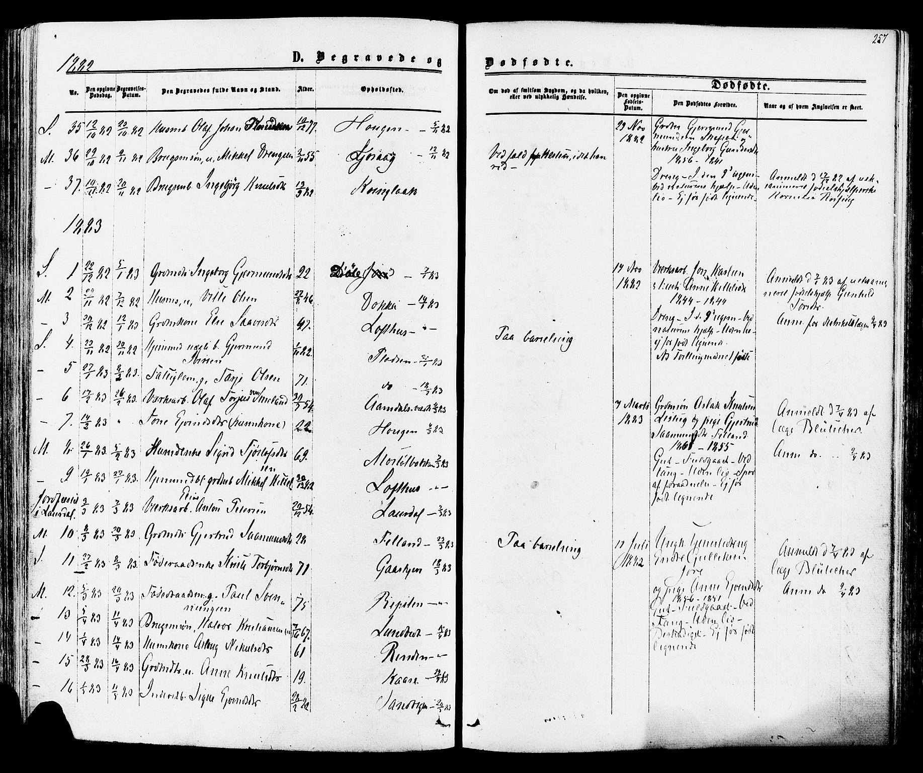 SAKO, Mo kirkebøker, F/Fa/L0006: Ministerialbok nr. I 6, 1865-1885, s. 257