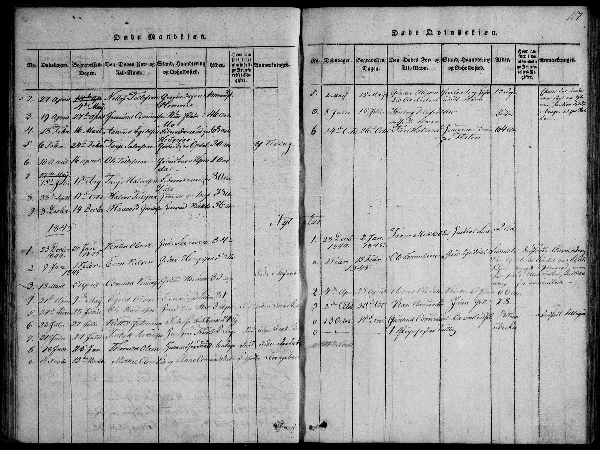 SAKO, Nissedal kirkebøker, F/Fb/L0001: Ministerialbok nr. II 1, 1814-1845, s. 117