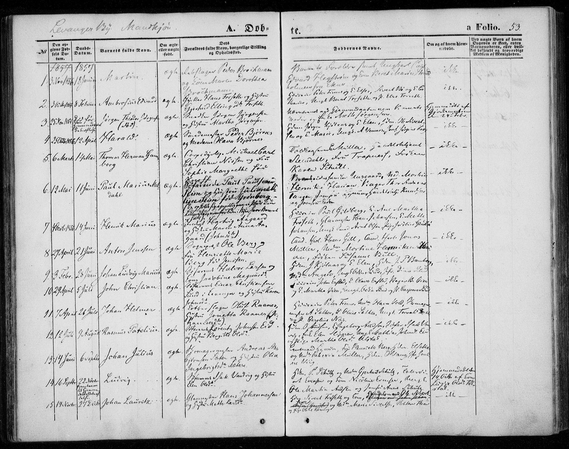 SAT, Ministerialprotokoller, klokkerbøker og fødselsregistre - Nord-Trøndelag, 720/L0184: Ministerialbok nr. 720A02 /1, 1855-1863, s. 53