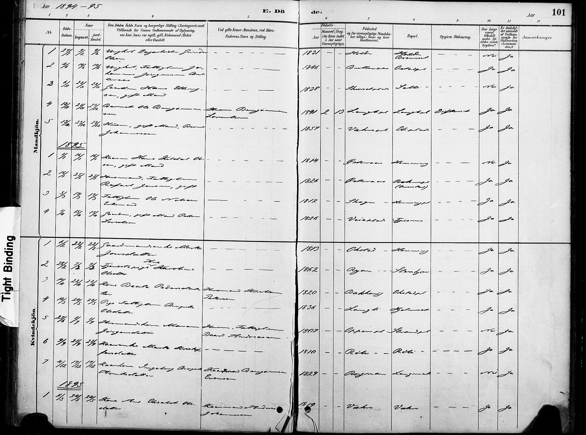 SAT, Ministerialprotokoller, klokkerbøker og fødselsregistre - Nord-Trøndelag, 738/L0364: Ministerialbok nr. 738A01, 1884-1902, s. 101