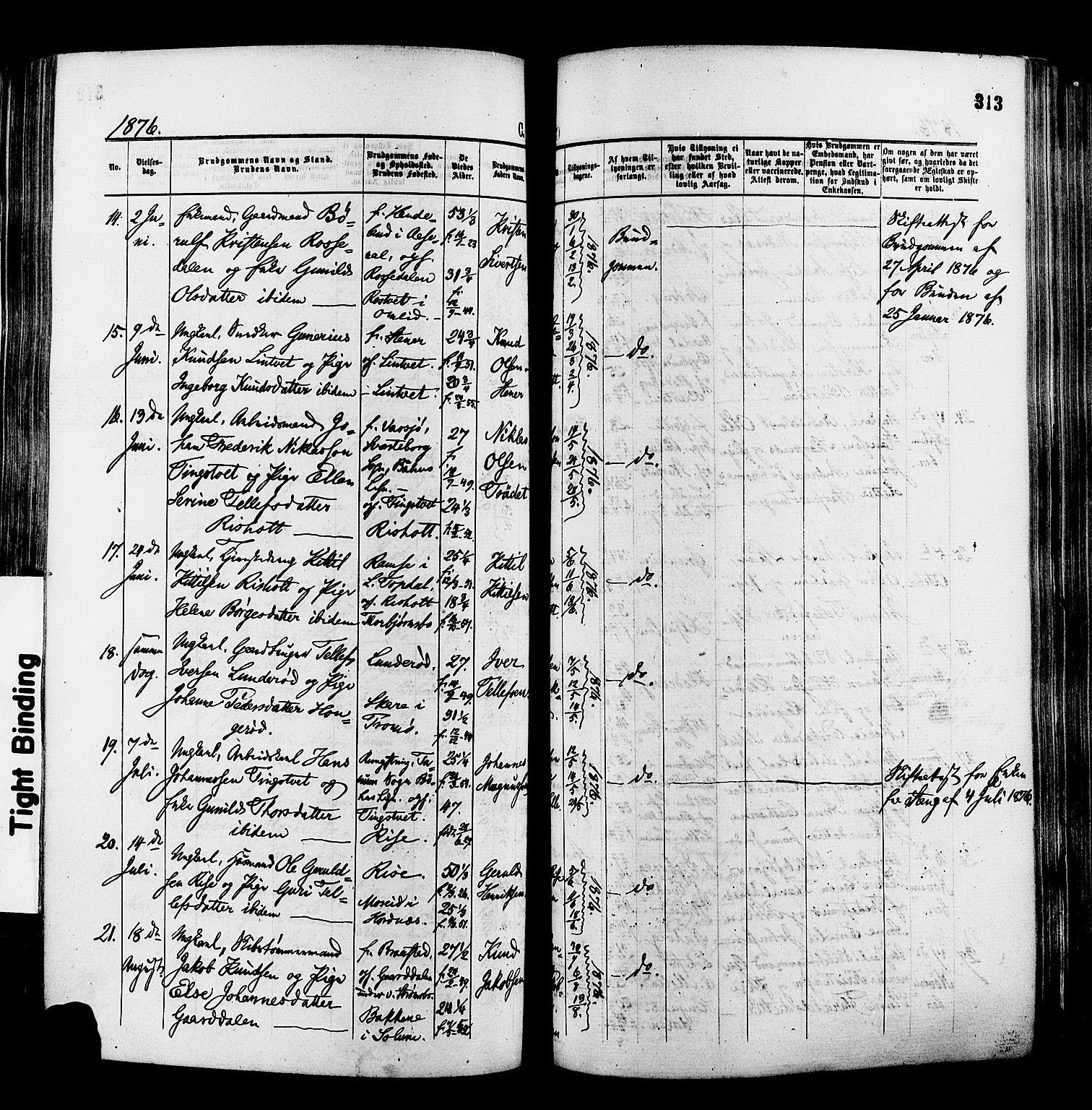 SAK, Øyestad sokneprestkontor, F/Fa/L0016: Ministerialbok nr. A 16, 1874-1886, s. 313